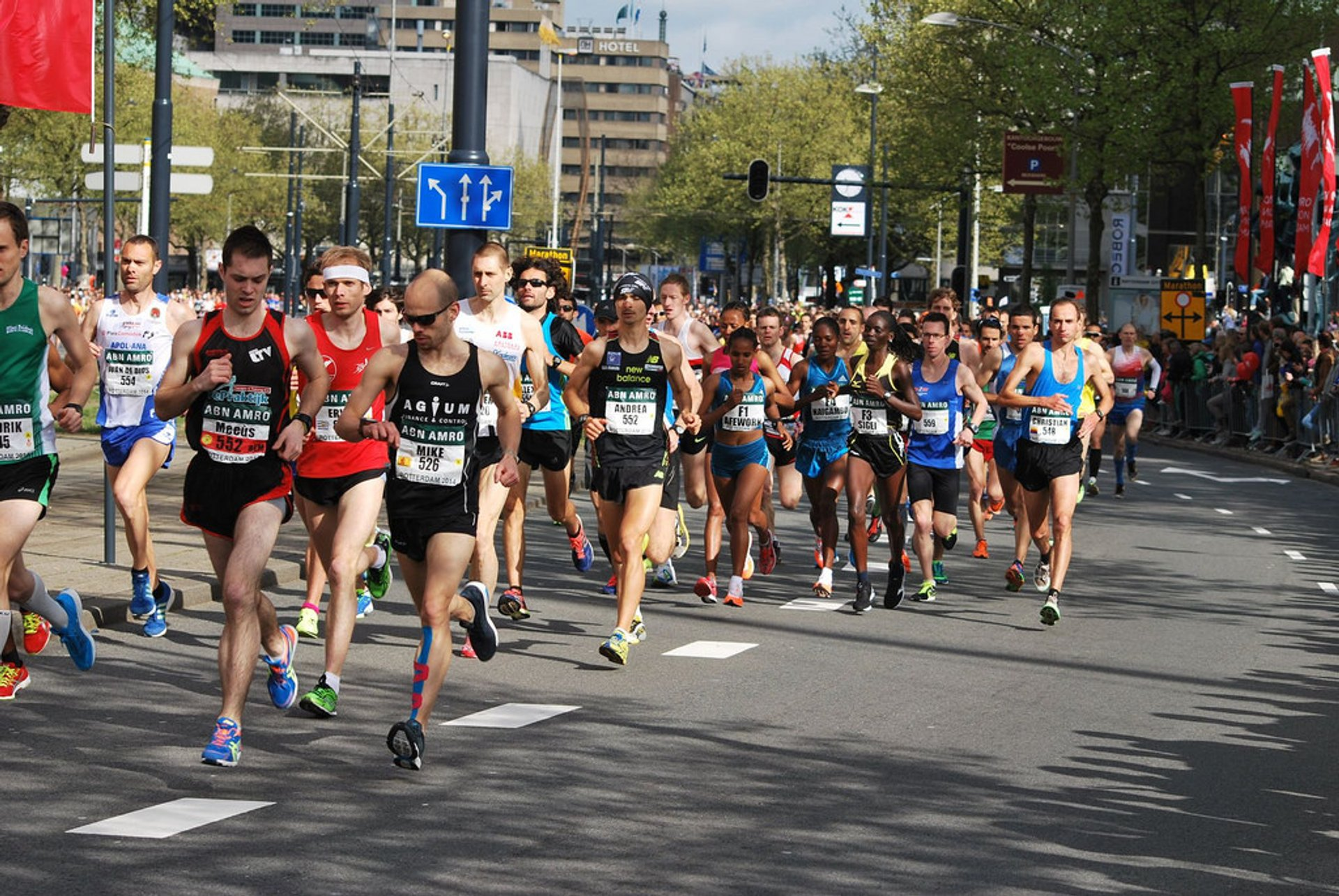 Rotterdam Marathon in The Netherlands - Best Season 2019