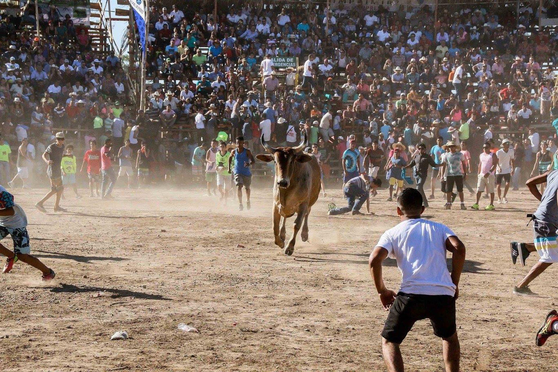 Fiestas Civicas Liberia in Costa Rica 2020 - Best Time