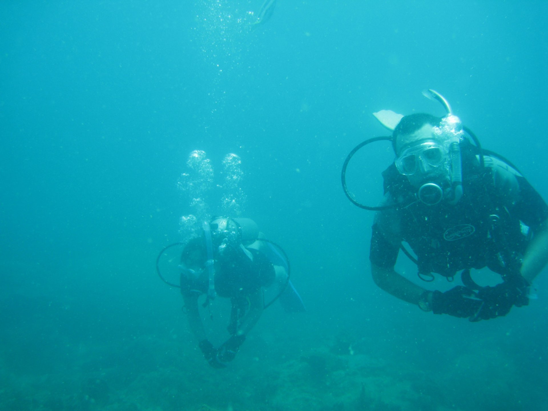 Scuba Diving in Cambodia - Best Season 2020