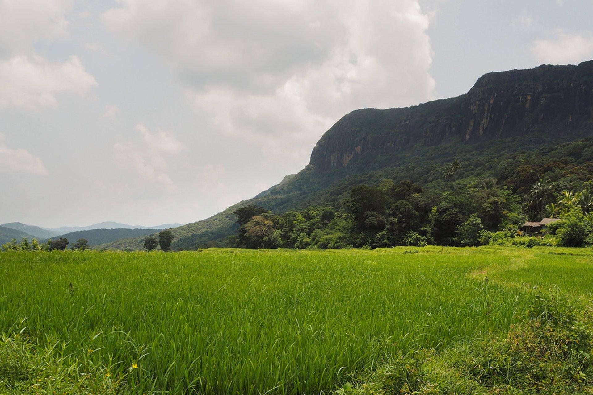 Manigala Trail, Knuckles, Sri Lanka 2020