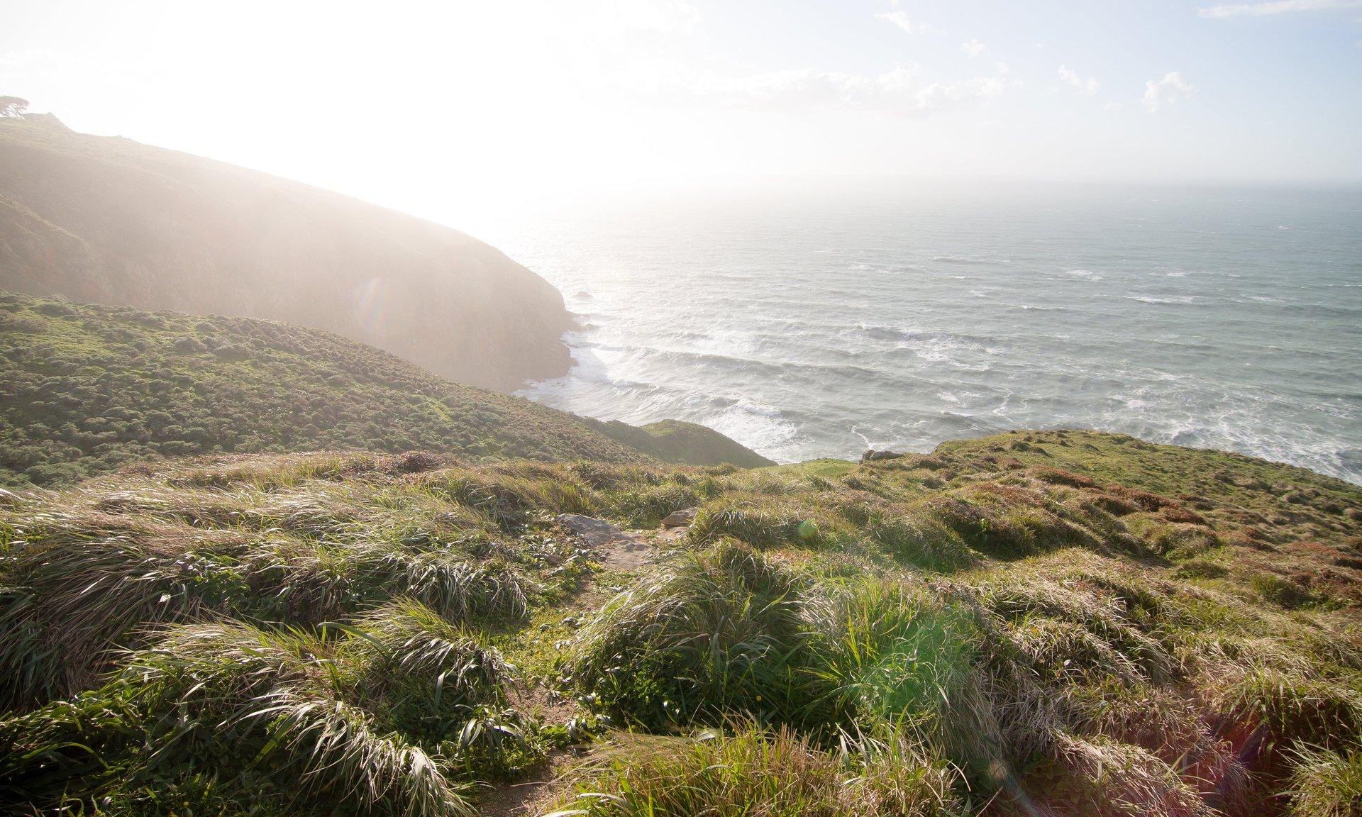 Point Reyes National Seashore, Marin County, California 2020