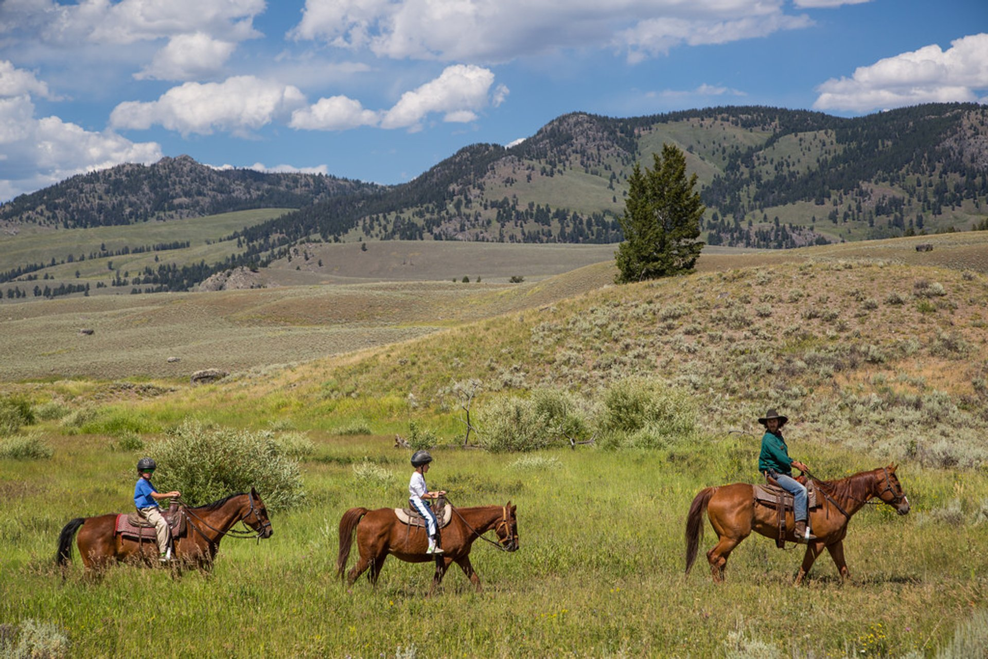 Horseback Riding in Yellowstone National Park 2020 - Best Time