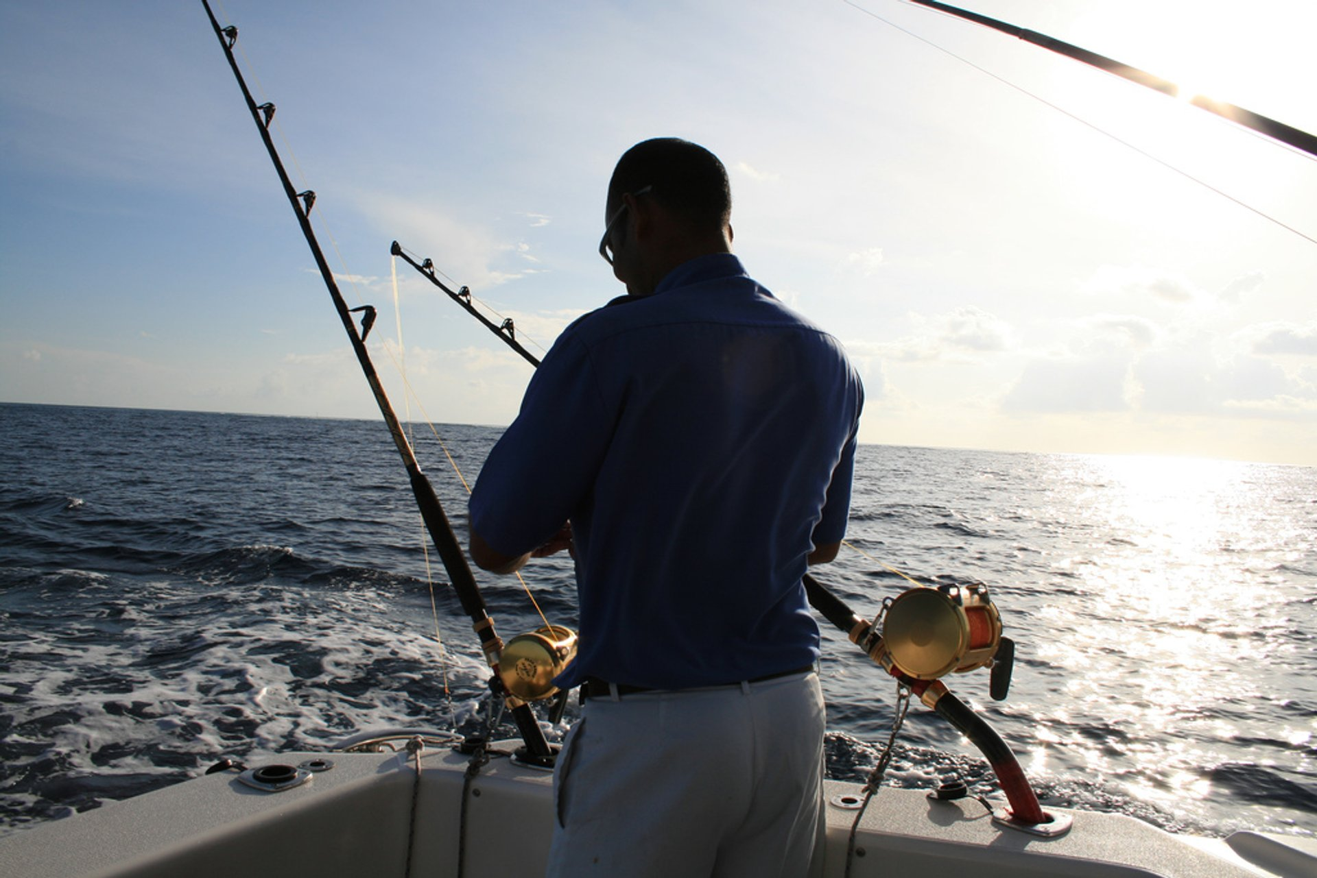 Big Game Fishing in Maldives 2020 - Best Time