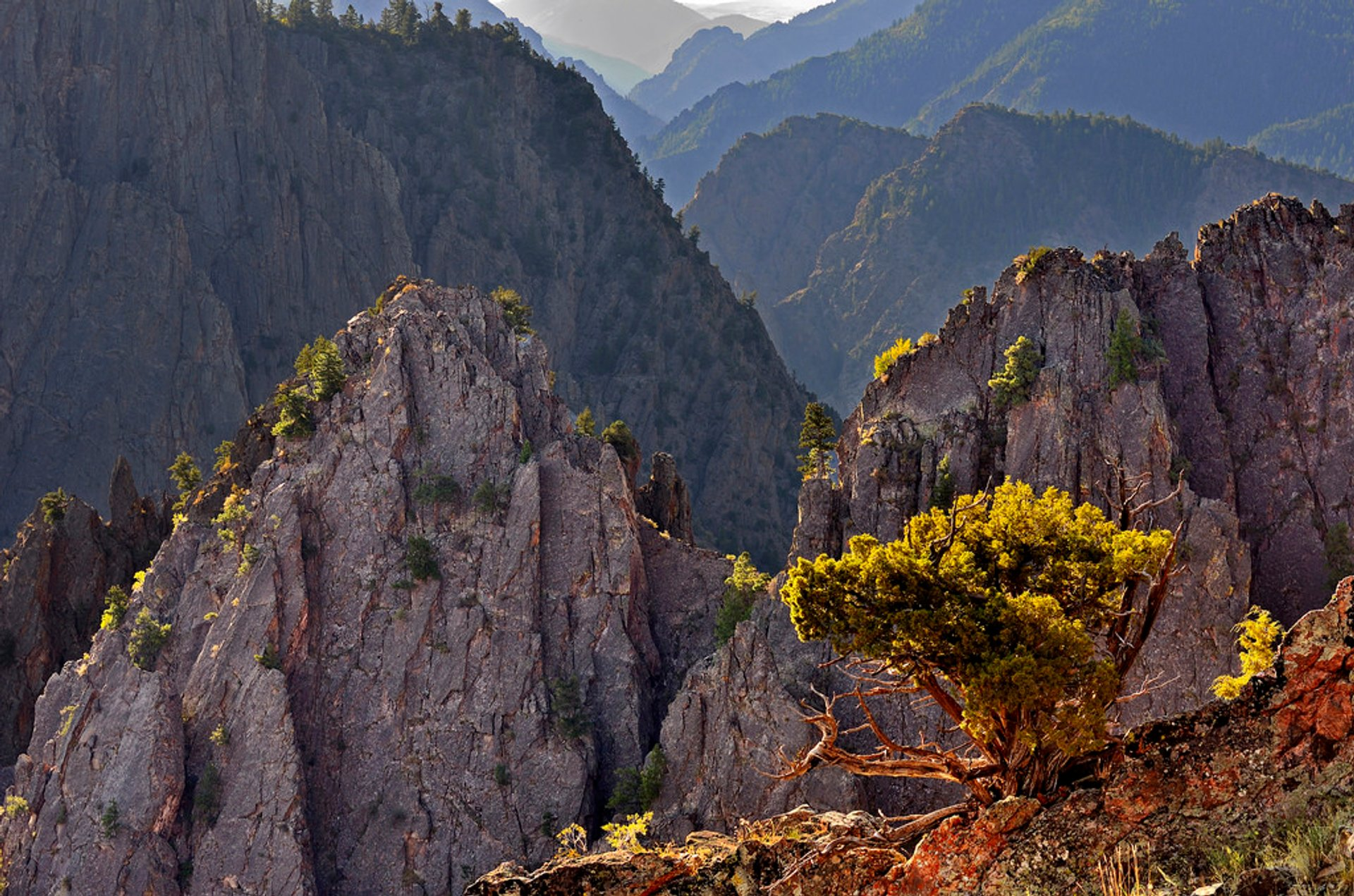 Best time to see Black Canyon of the Gunnison National Park 2020