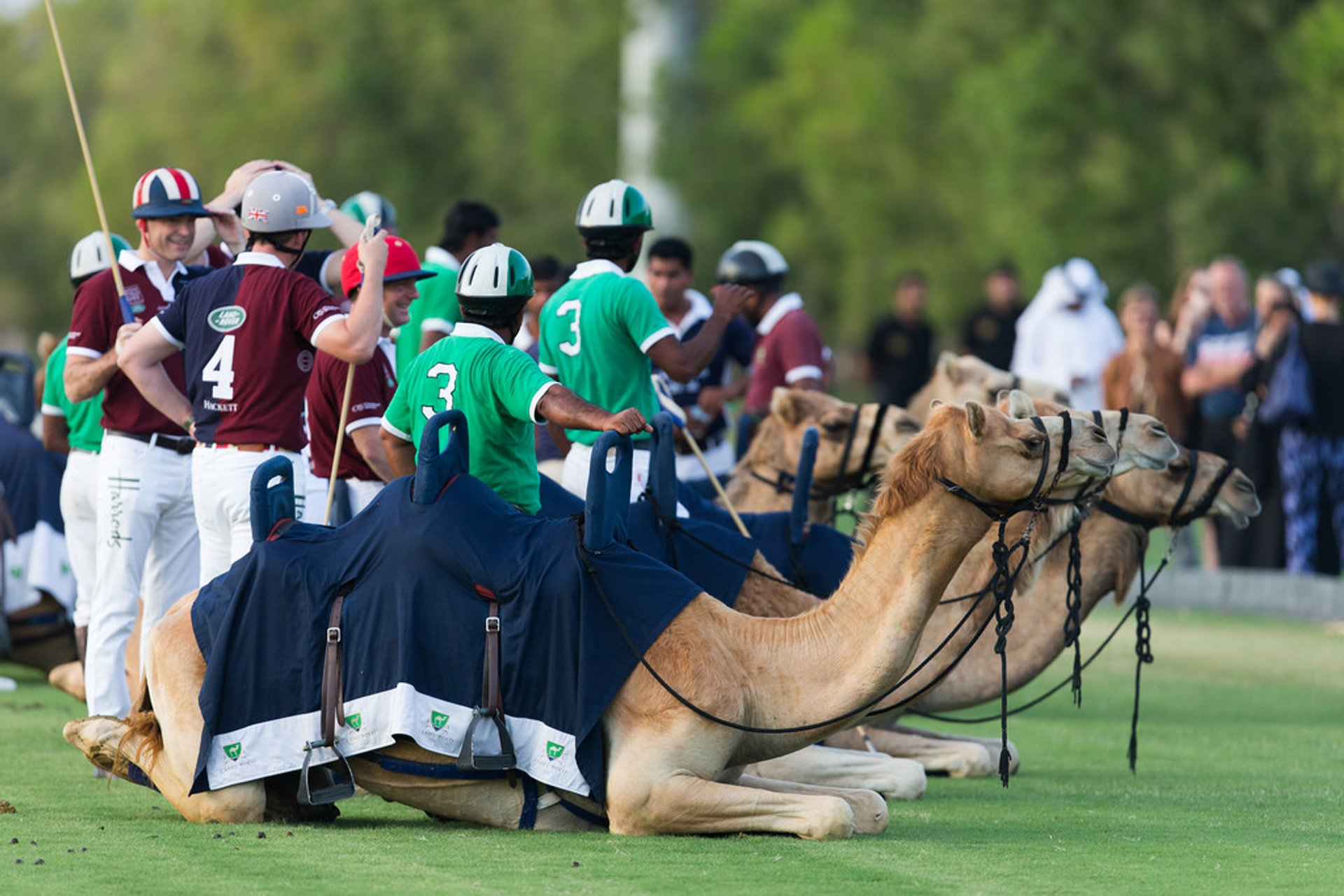 Polo Season in Dubai - Best Season 2020