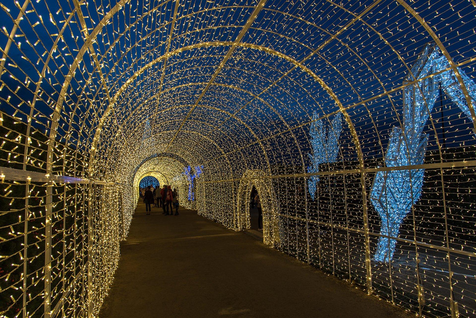 Enchant Christmas at Global Life Park at Arlington, Texas 2020