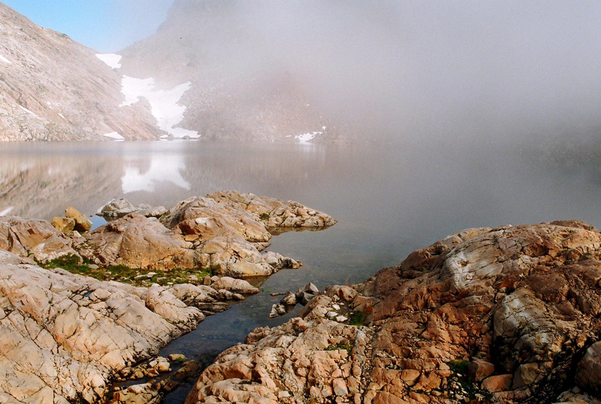 Foggy Lake and lifting mist 2020