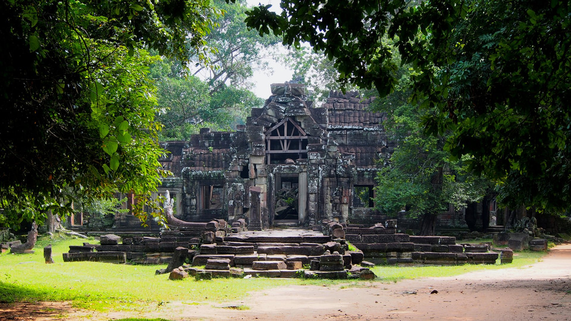 Angkor Jungles and Temples in Cambodia 2020 - Best Time