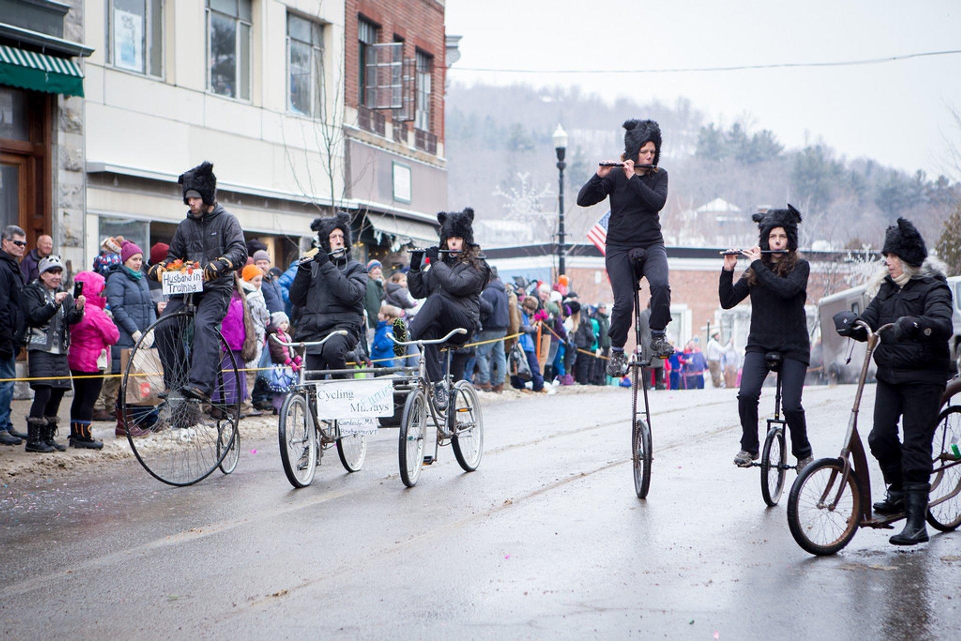 Saranac Lake Winter Carnival in New York State - Best Season 2020