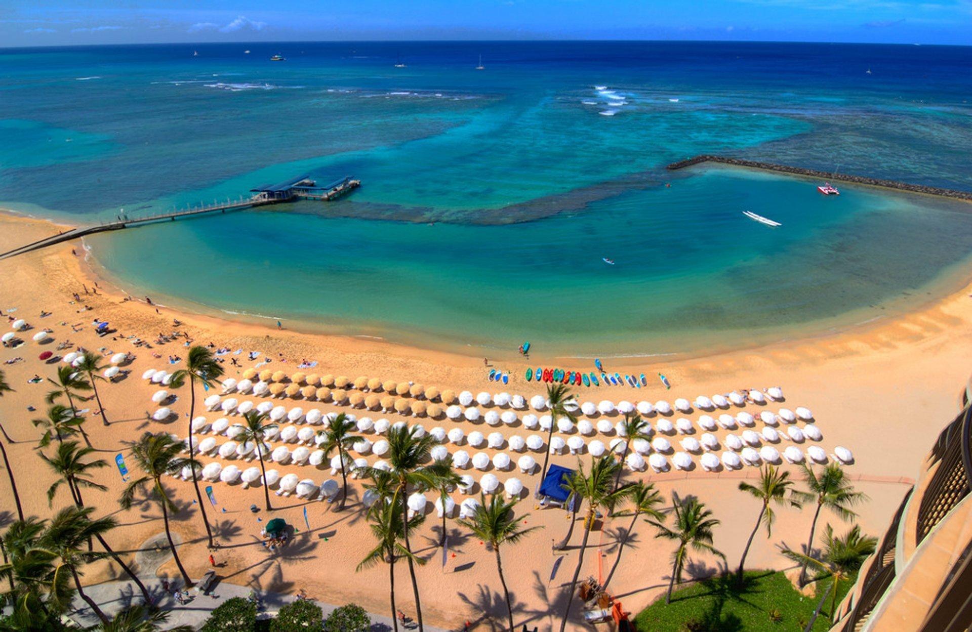 Waikiki Beach 2020