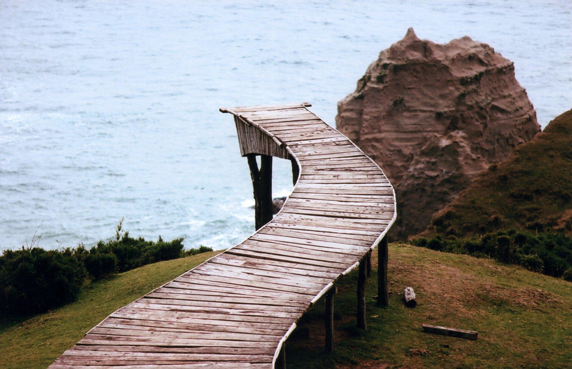 Dock of Souls (Muelle de las Almas) in Chile 2020 - Best Time