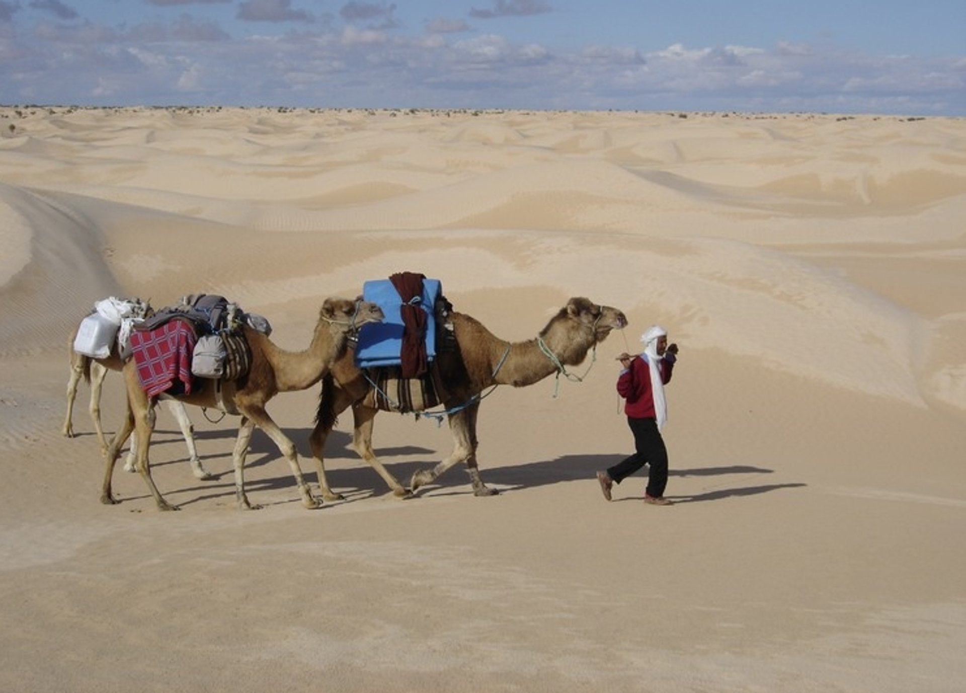 Sahara Camel Trekking  in Tunisia 2020 - Best Time
