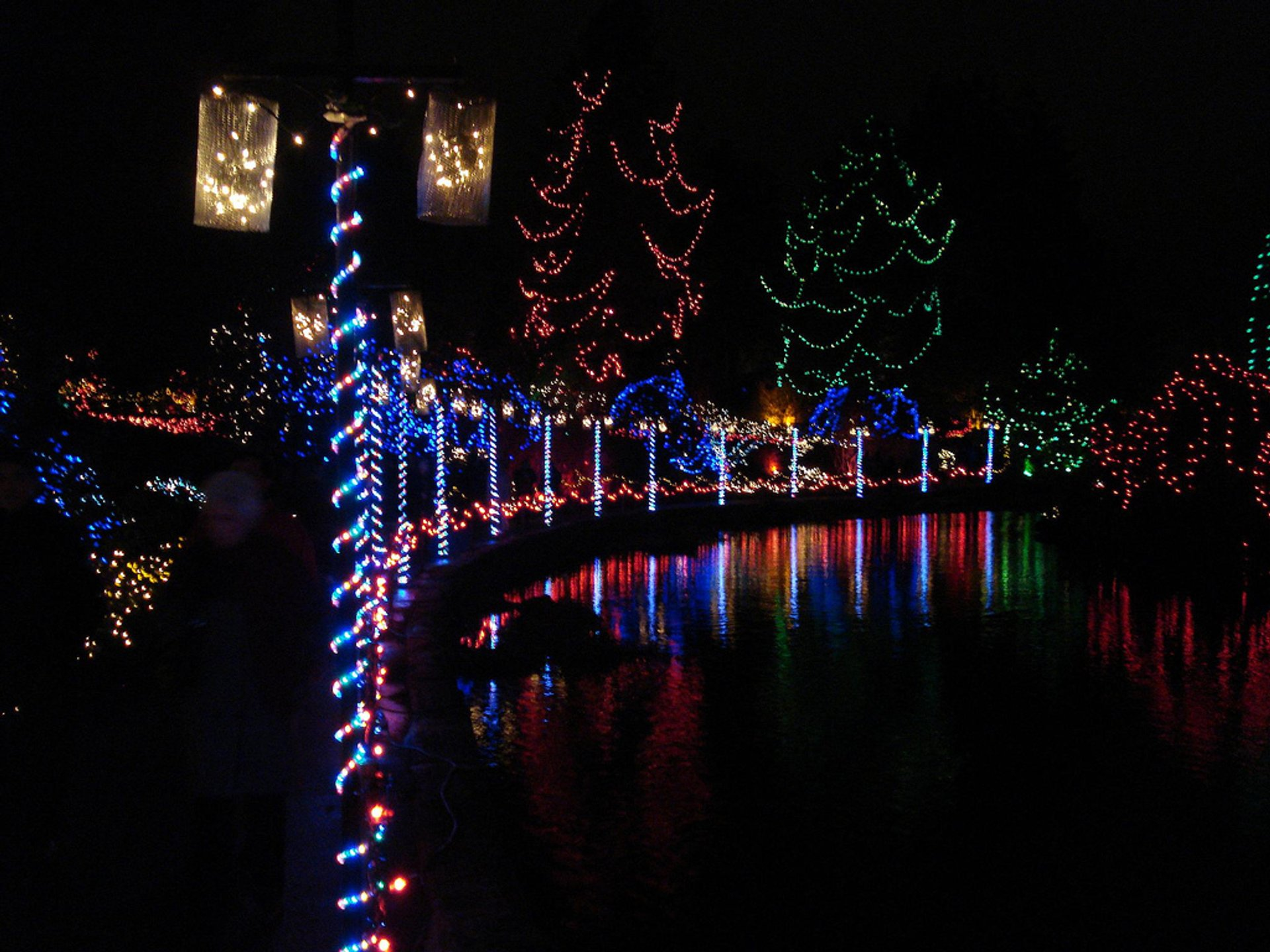 Best time to see VanDusen Festival of Lights in Vancouver 2020