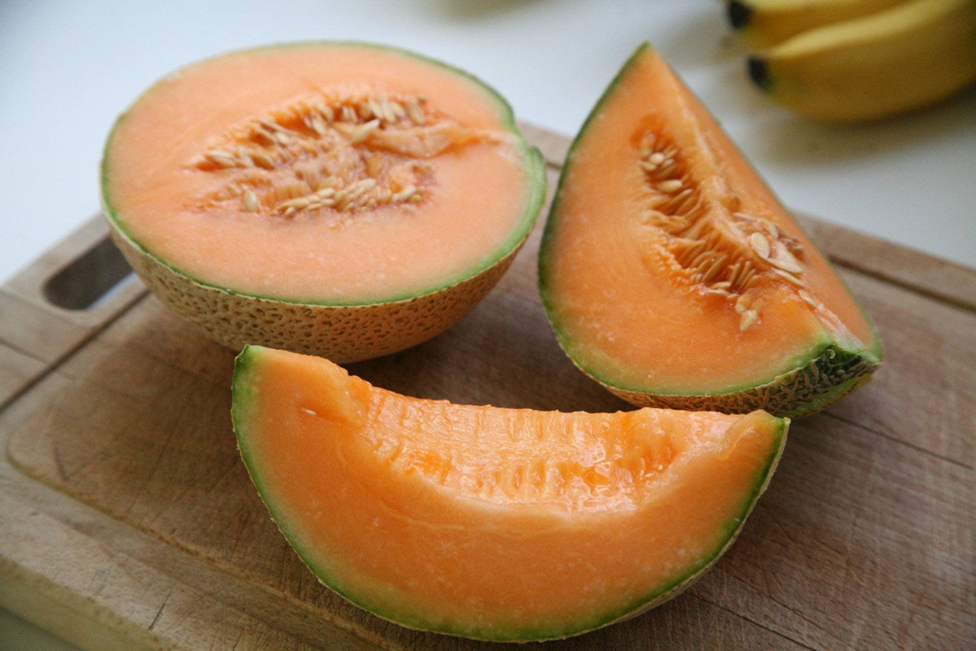 Best time for Cantaloupe in Costa Rica 2019