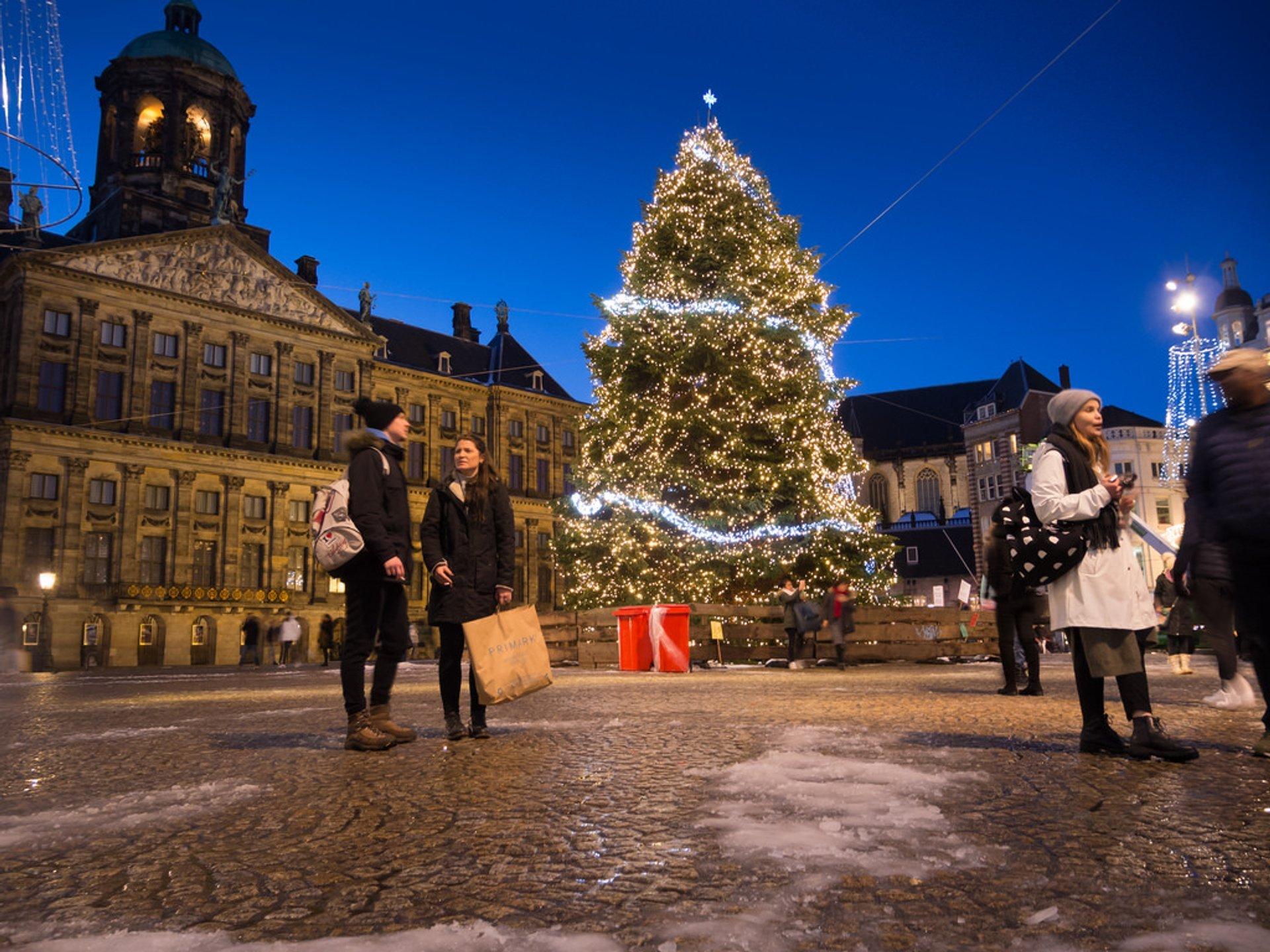 Christmas tree on Dam Square 2020