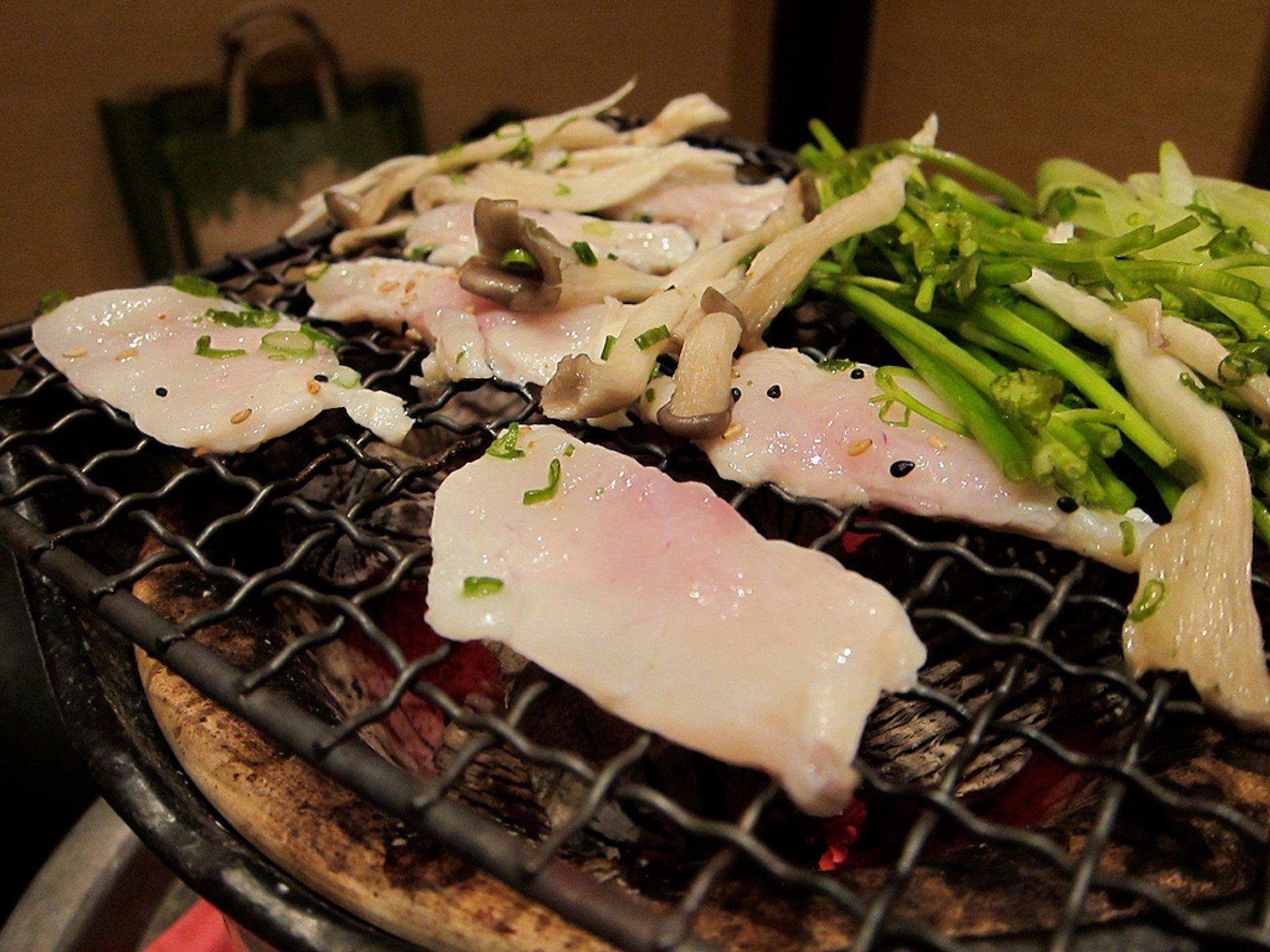 Fugu (Puffer Fish or Blowfish) in South Korea - Best Season