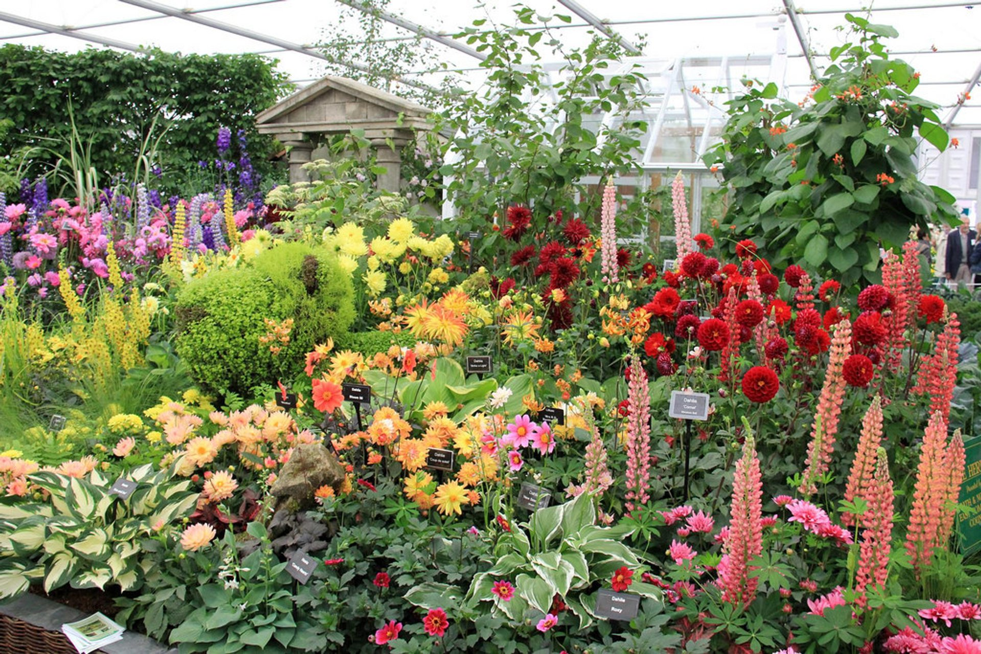 Best time for RHS Chelsea Flower Show in London 2020