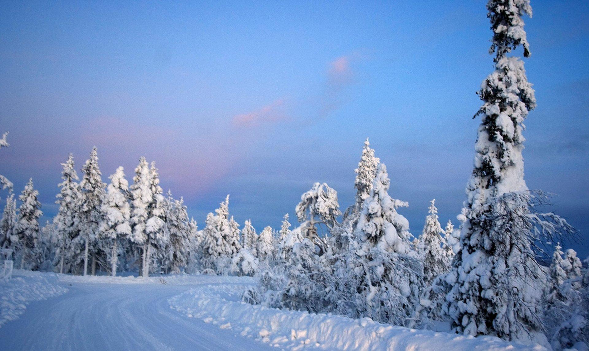 Kaamos, Levi, Kittilä, Finnish Lapland 2020