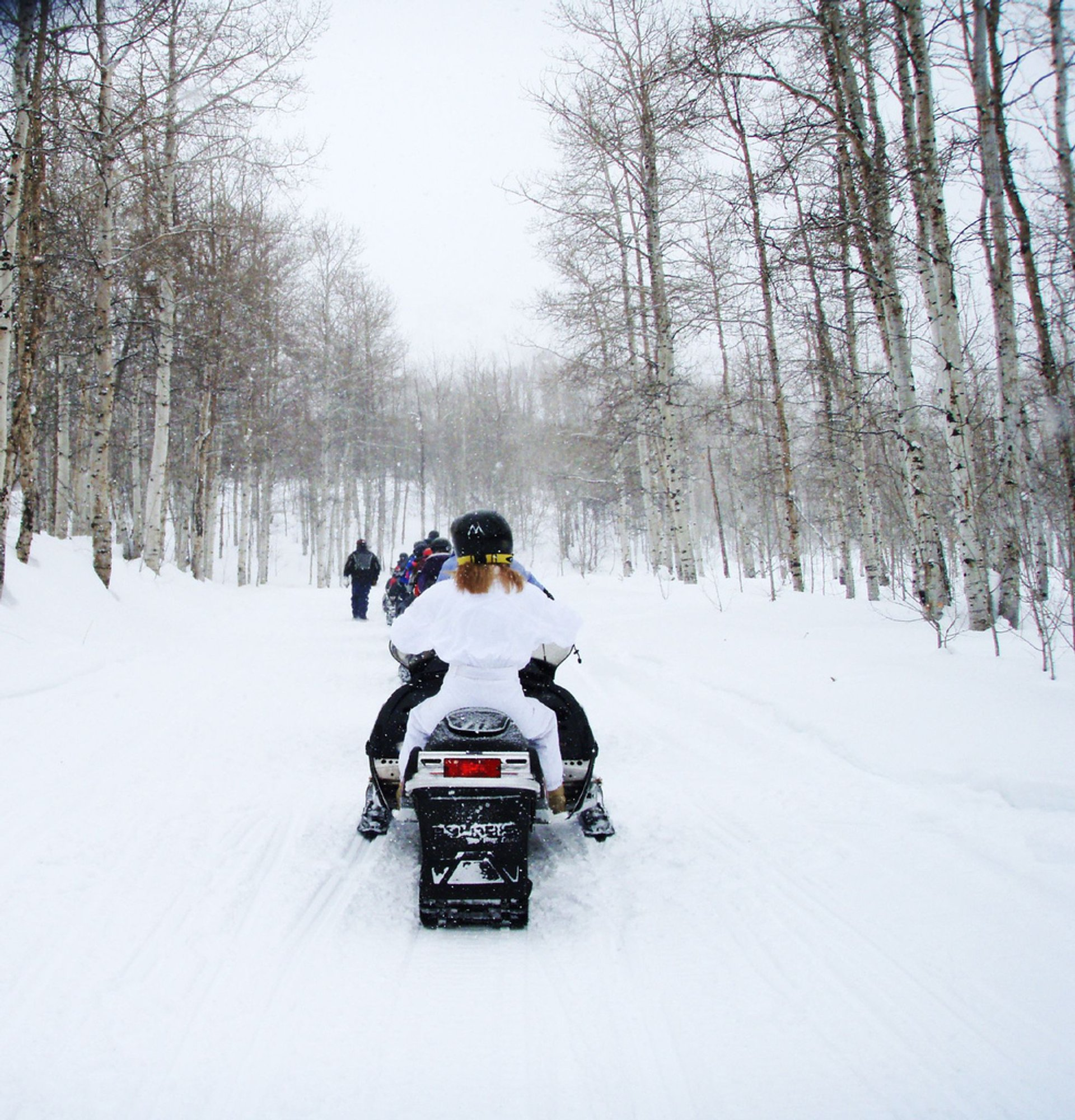 Best time to see Snowmobiling in Utah 2019