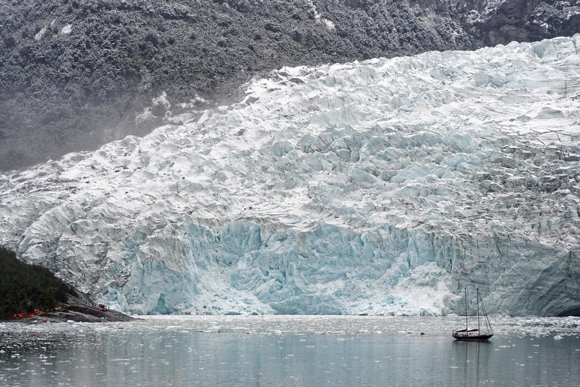 Pia Glacier 2020