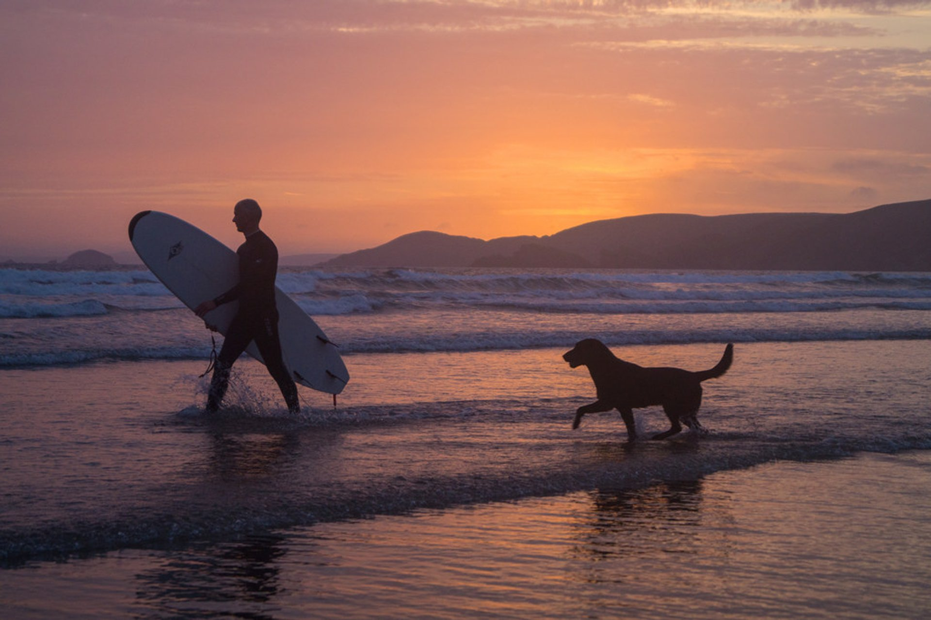 Micky (surfer) and his dog Jake (wannabe surfer), Newgale beach, Pembrokeshire, Wales, UK 2020