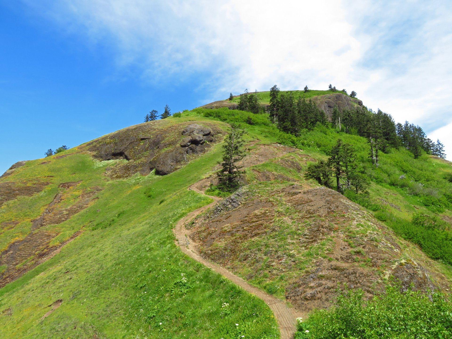 Best time to see Saddle Mountain 2020