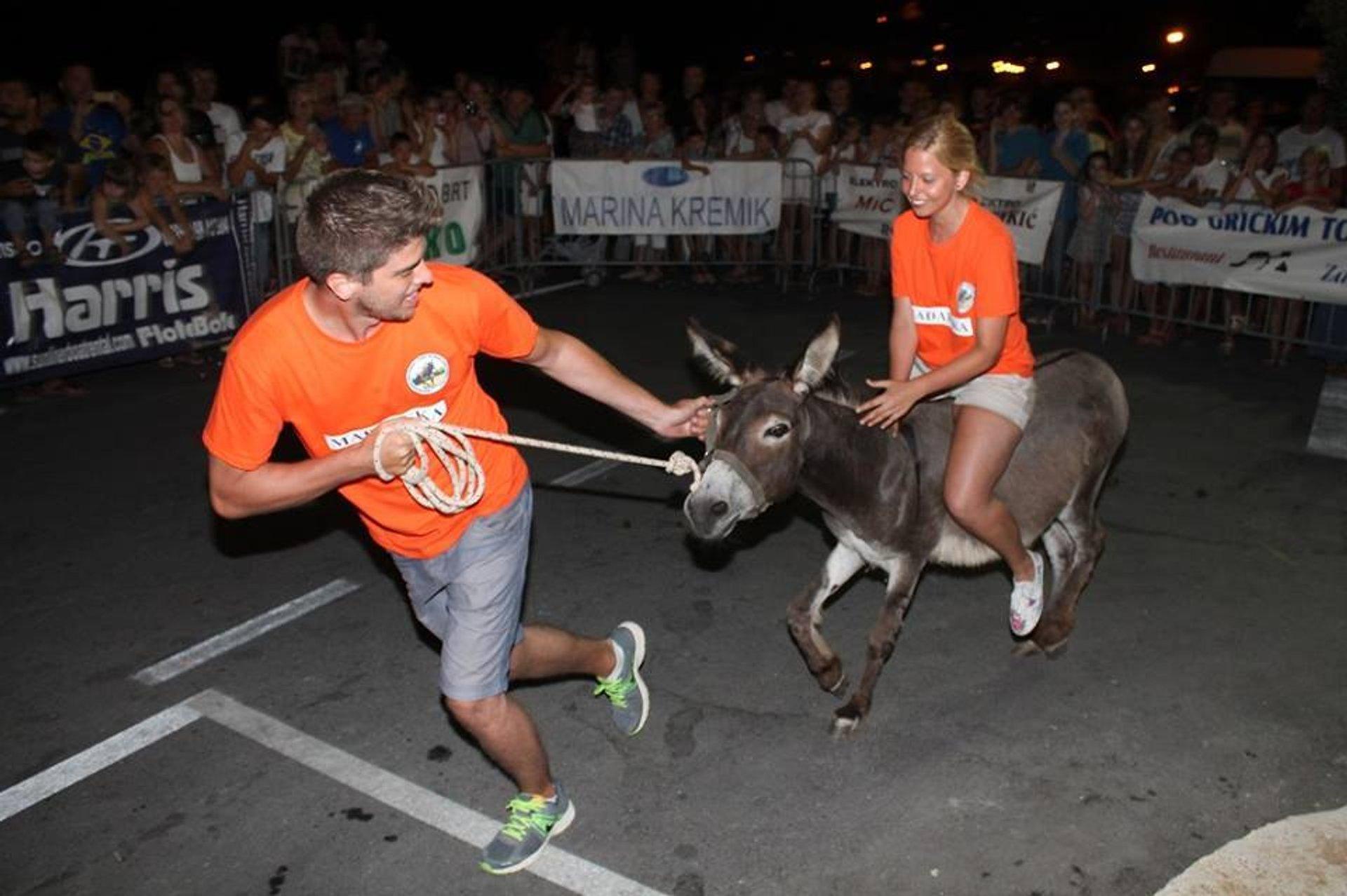 International Donkey Race in Croatia 2020 - Best Time