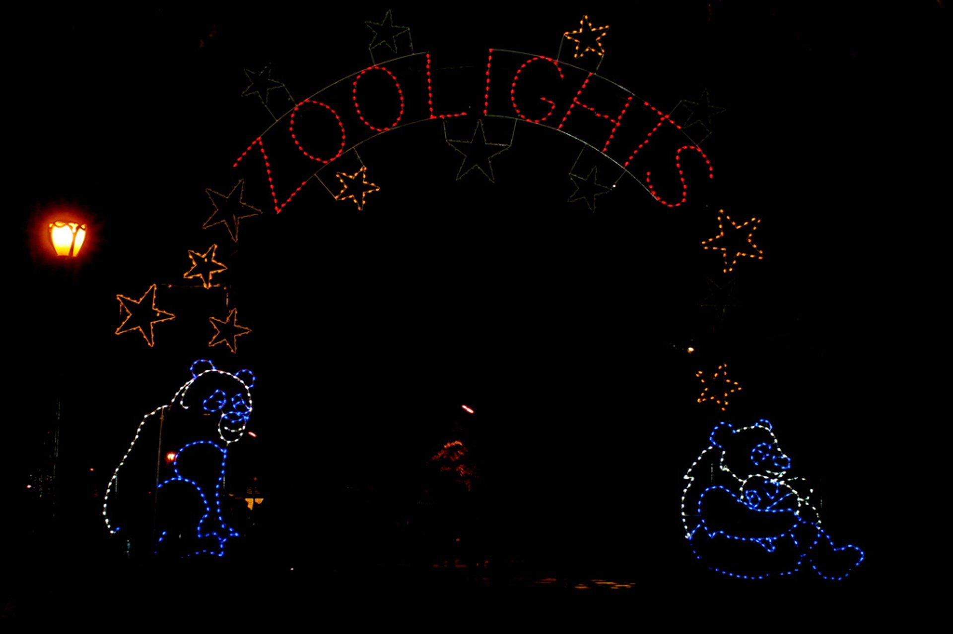 Holiday Lights at the National Zoo 2019