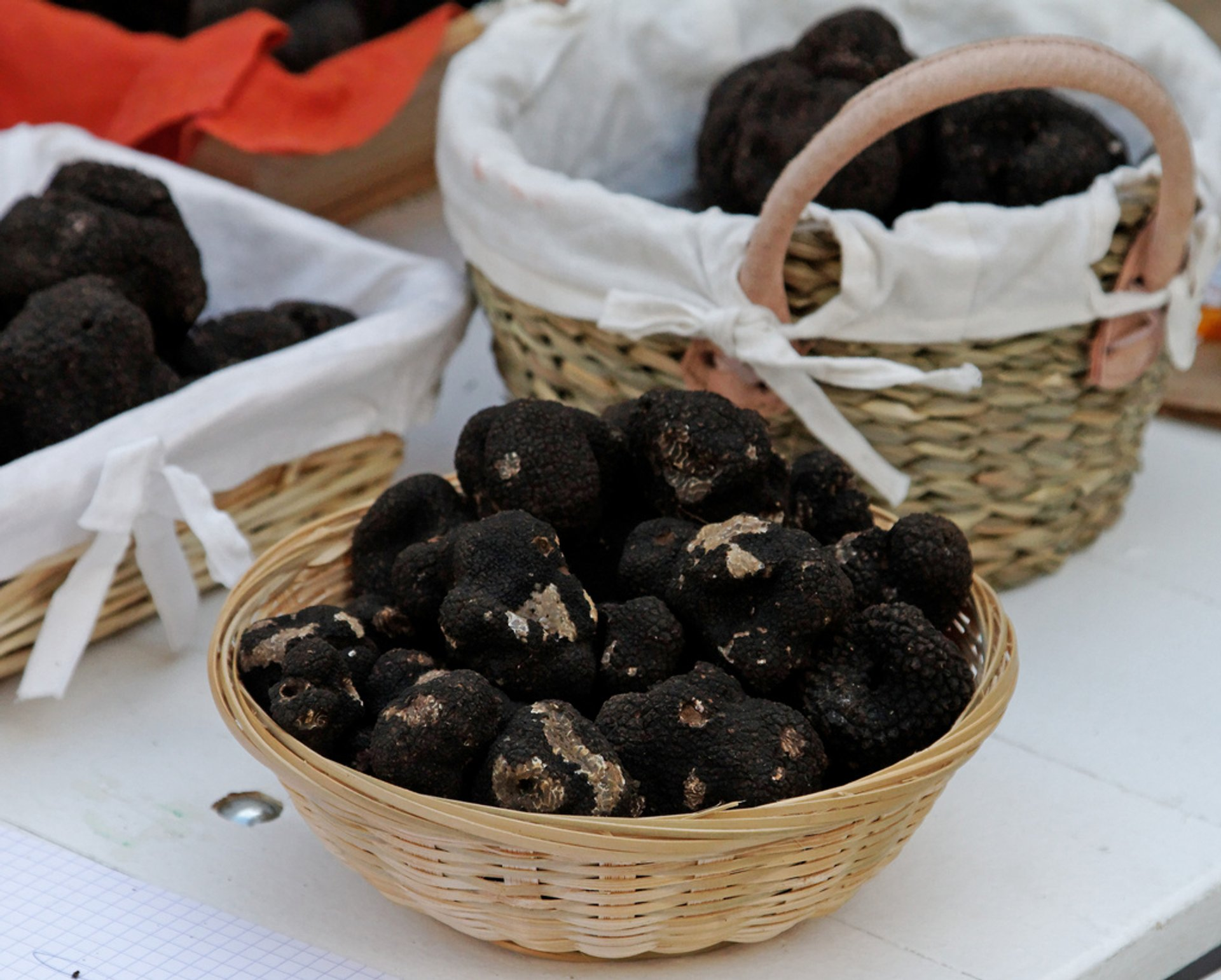 Black Truffle in Provence & French Riviera - Best Season 2020