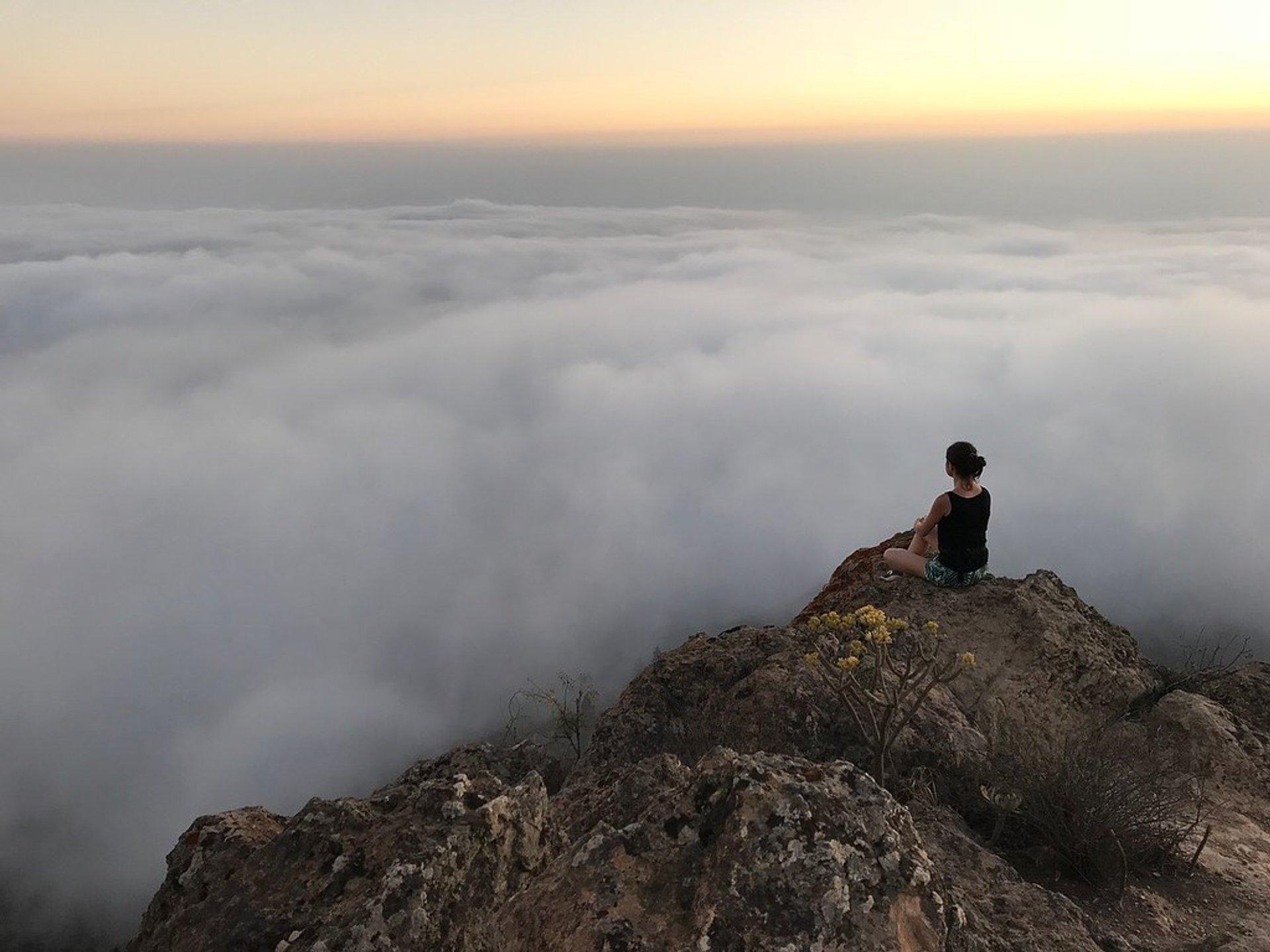 Sea of Clouds in Canary Islands - Best Season 2020