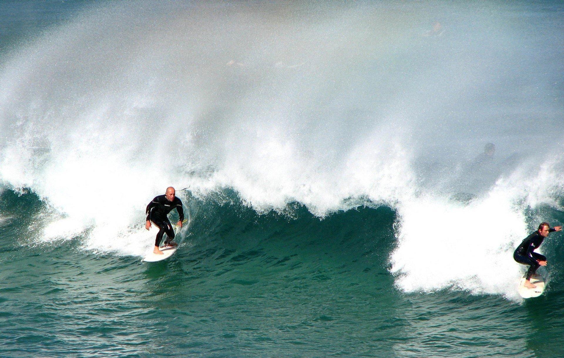 Surfing Around Sydney in Sydney 2020 - Best Time