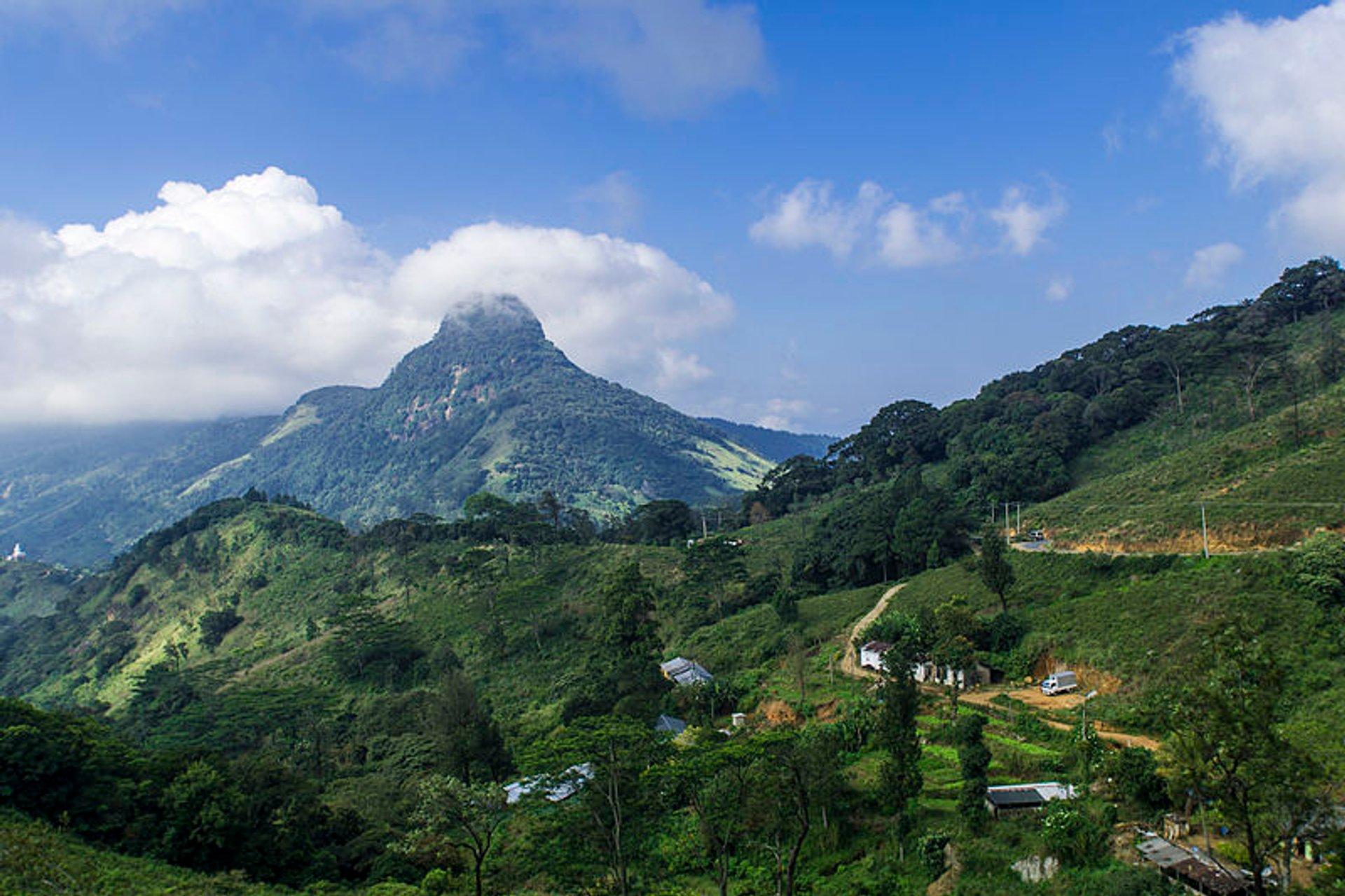 Trekking in the Knuckles Range  in Sri Lanka 2020 - Best Time