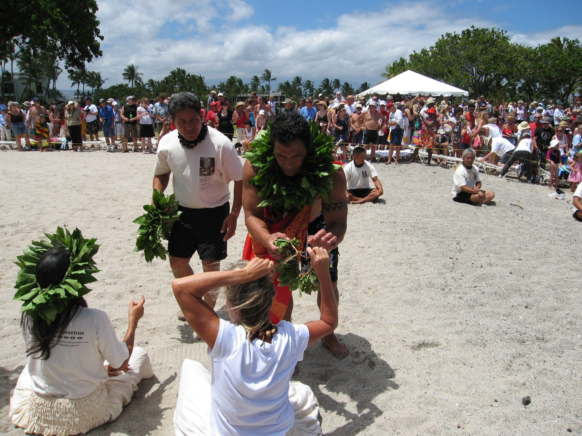 Turtle Independence Day at Mauna Lani Bay 2020