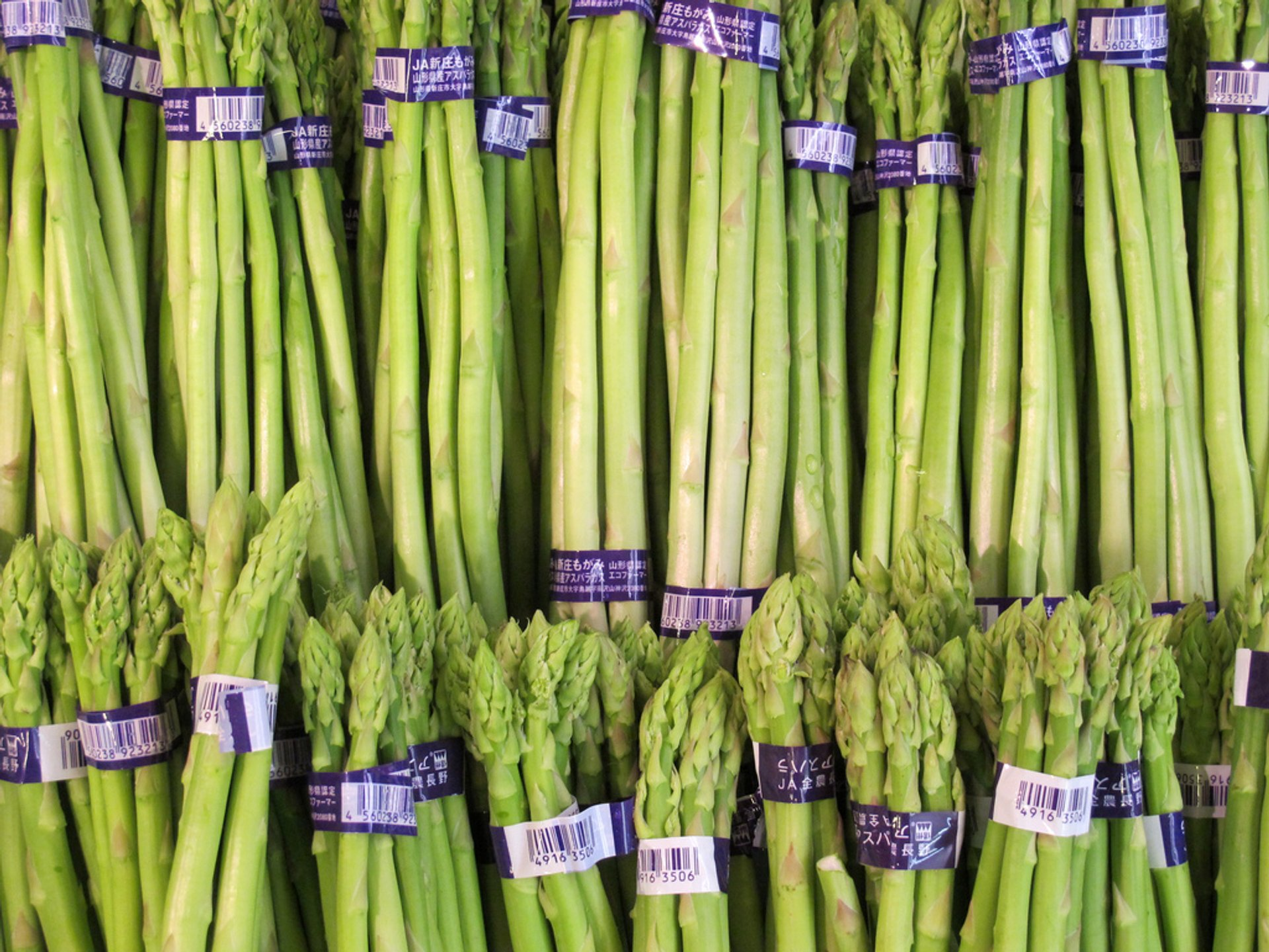 Asparagus in Japan 2020 - Best Time