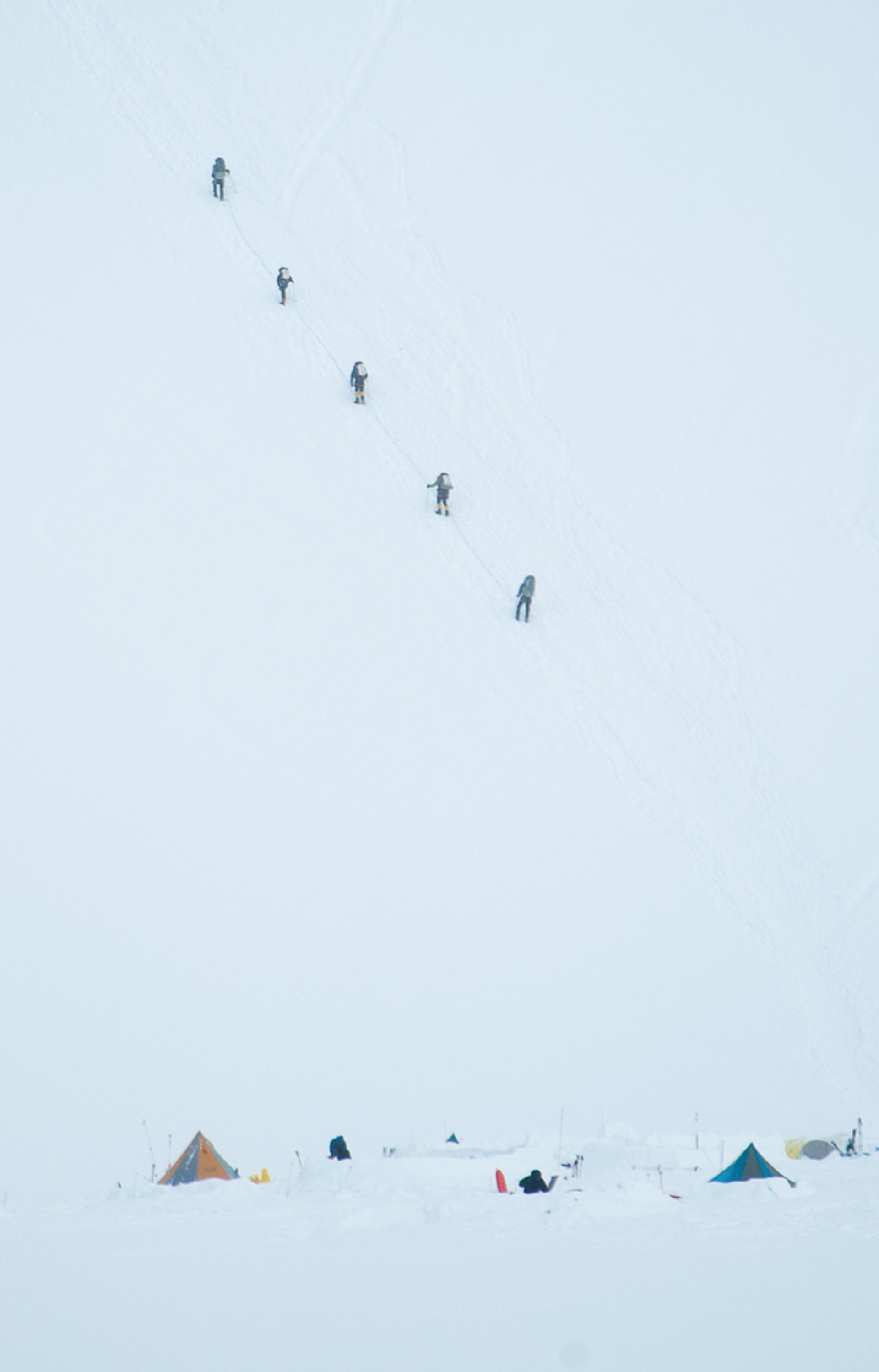 Climbers on McKinley 2020