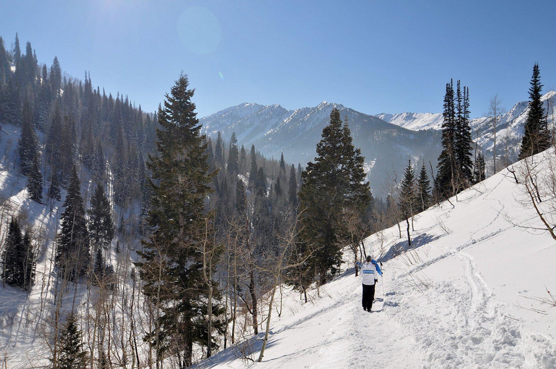 Best time for Snowshoeing in Utah 2020