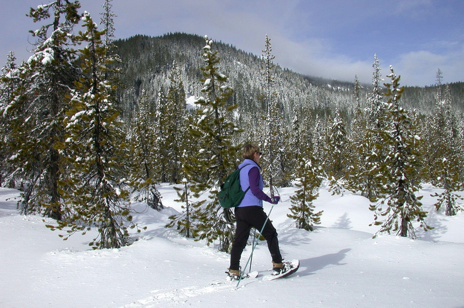 Snowshoeing at White River-Mt Hood 2020