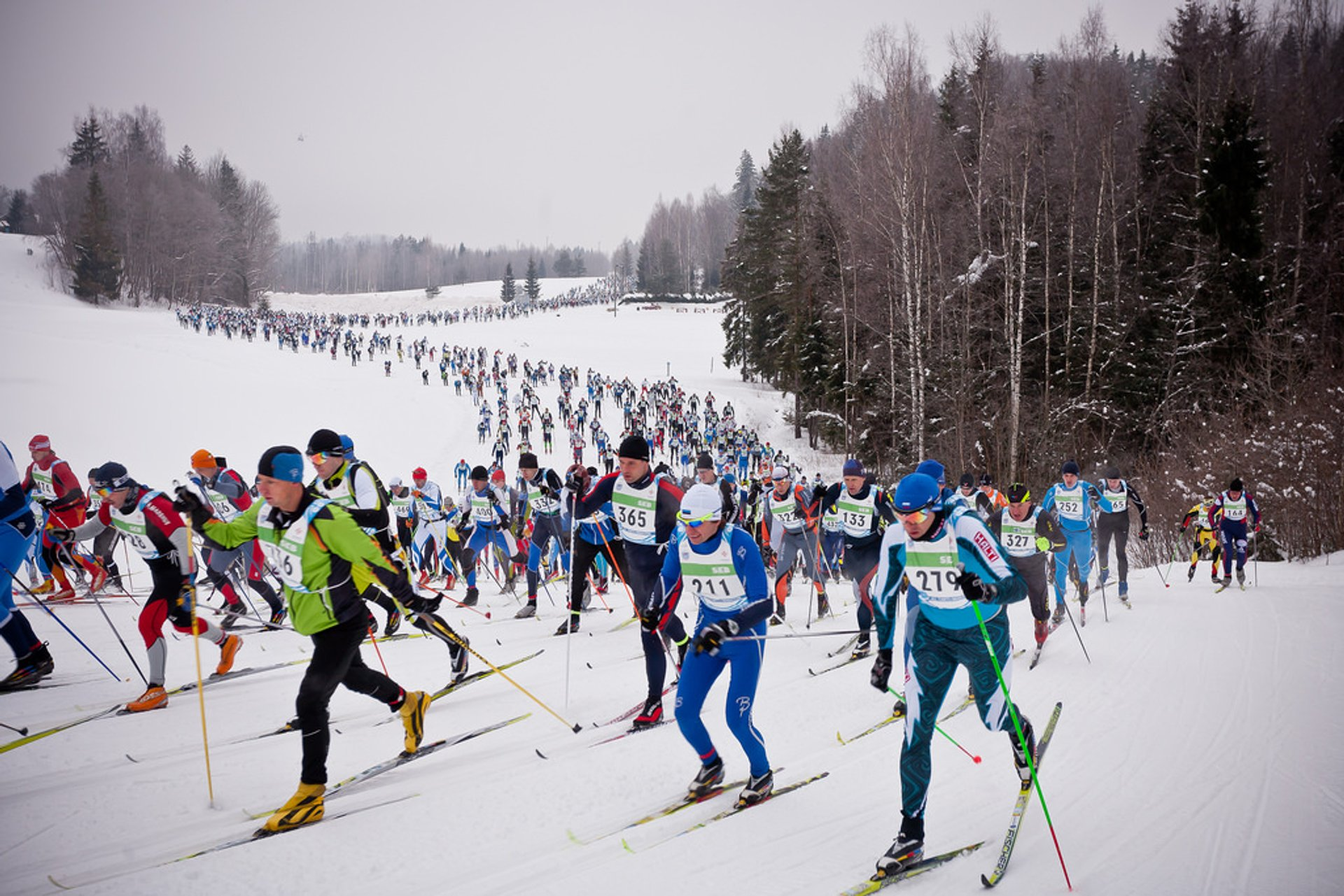 Tartu Ski Marathon in Estonia 2020 - Best Time
