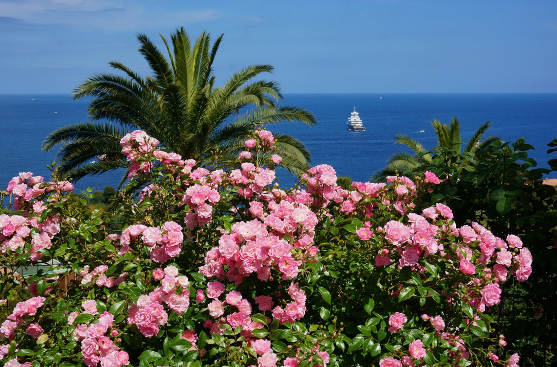 Best time to see Exotic Garden of Monaco in Monaco 2020