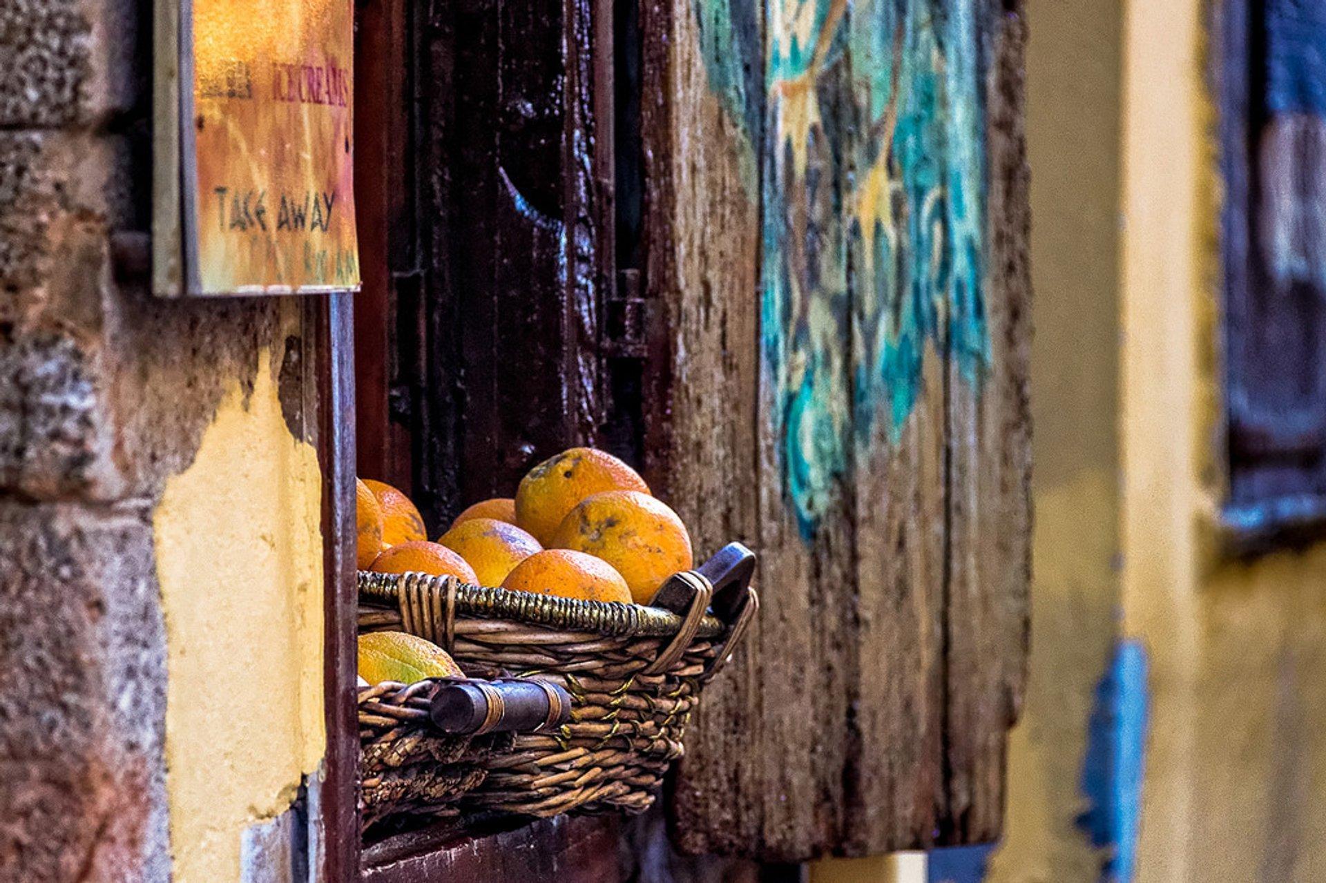 Lemon and Orange Season in Crete 2020 - Best Time