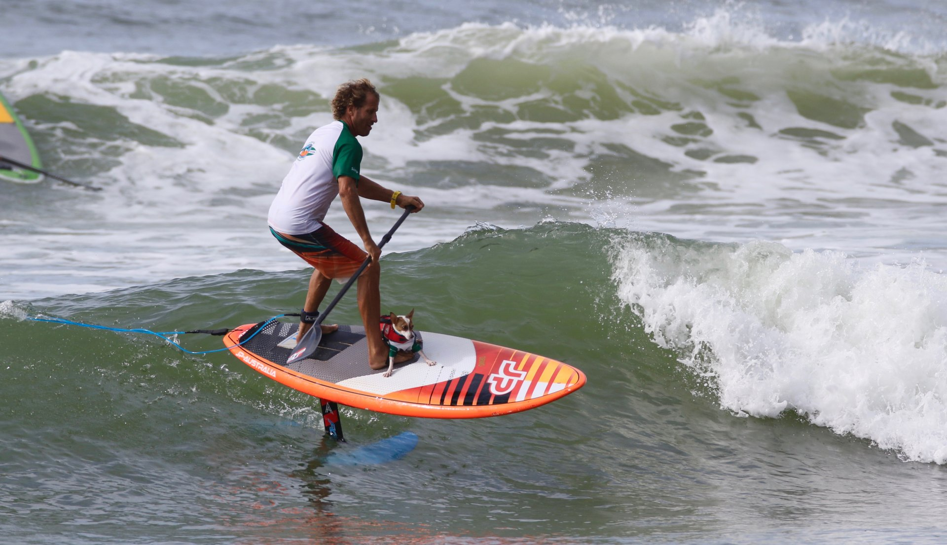 Best time to see Noosa Festival of Surfing in Australia 2020