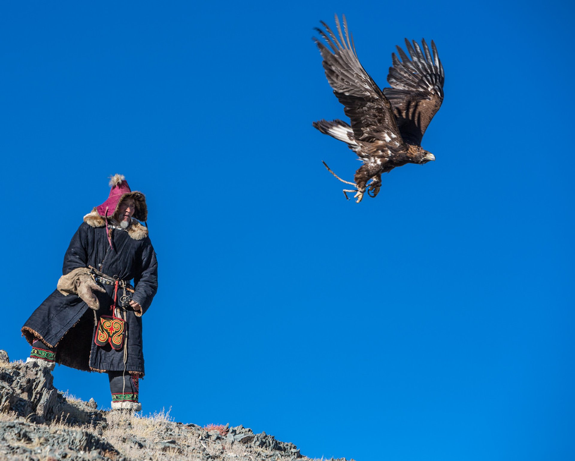 Hunting with Eagles in Mongolia - Best Season 2019