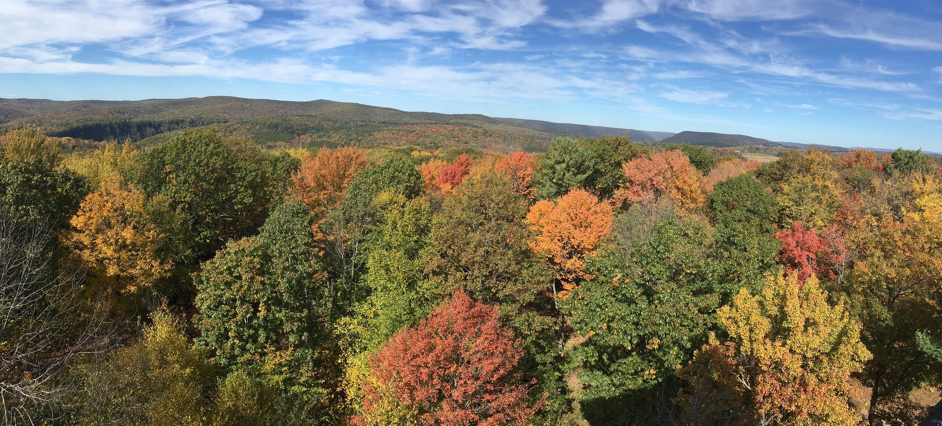 Best time for Fall Foliage 2020