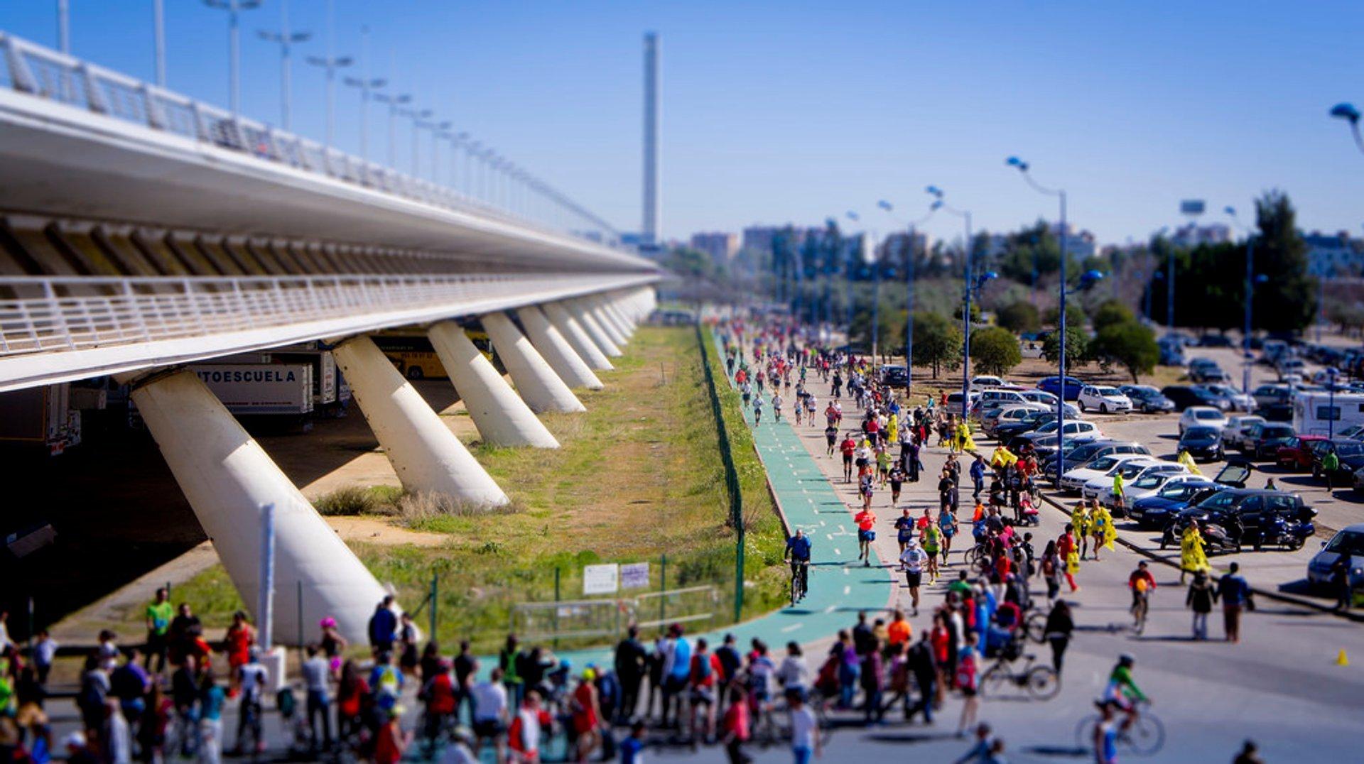 Seville Marathon (Zurich Maraton de Sevilla) in Seville 2019 - Best Time