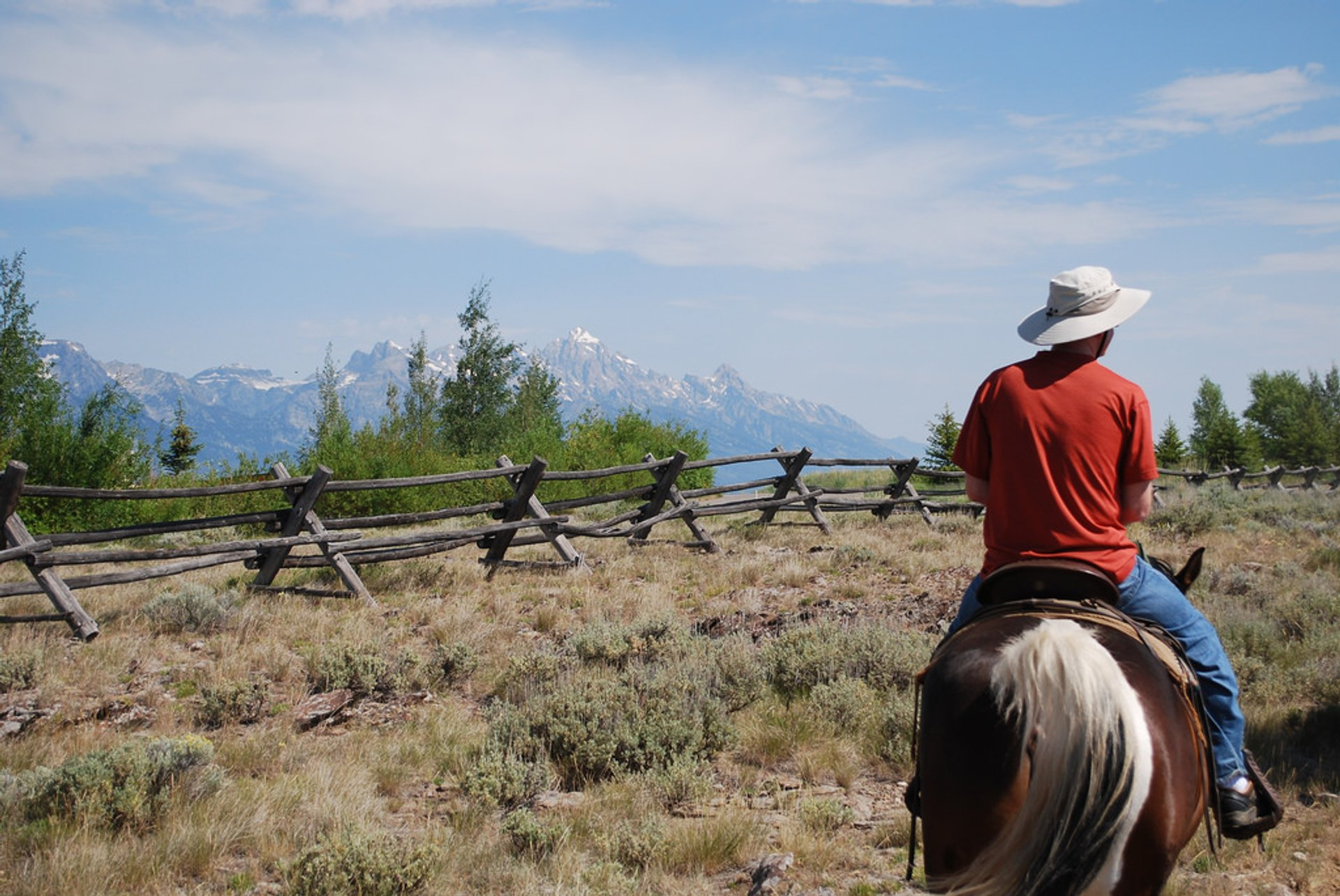 Horseback Riding in Grand Teton, Yellowstone National Park, Wyoming, USA 2020