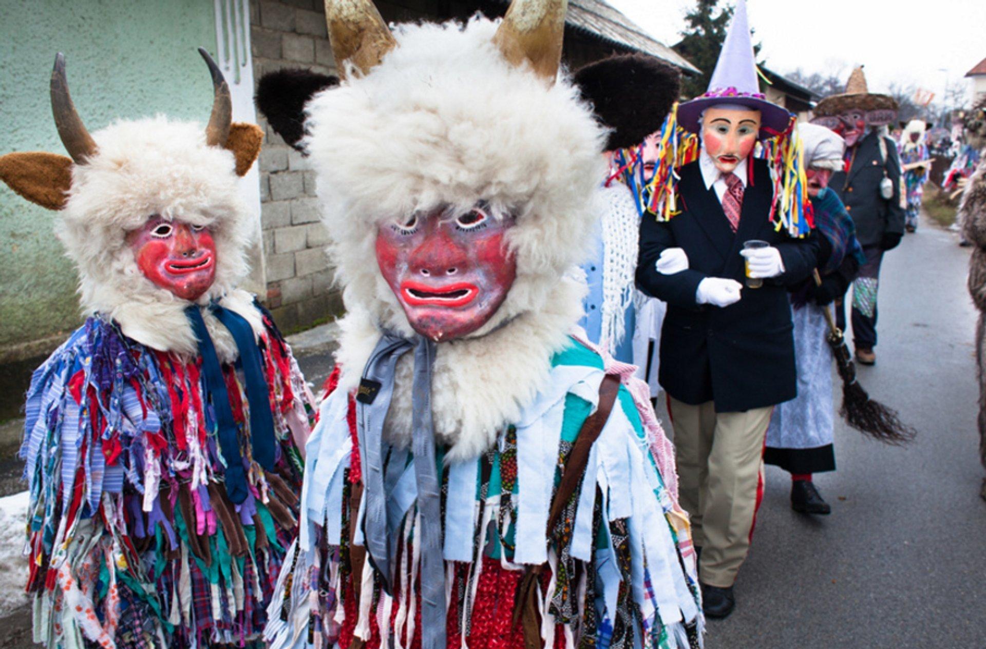 Pust Carnival in Cerknica in Slovenia 2020 - Best Time