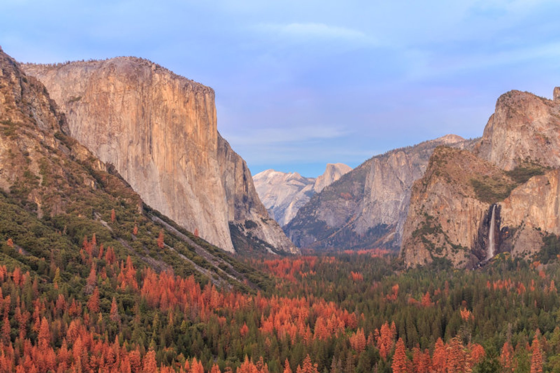 Best time for California Fall Colors in California 2020