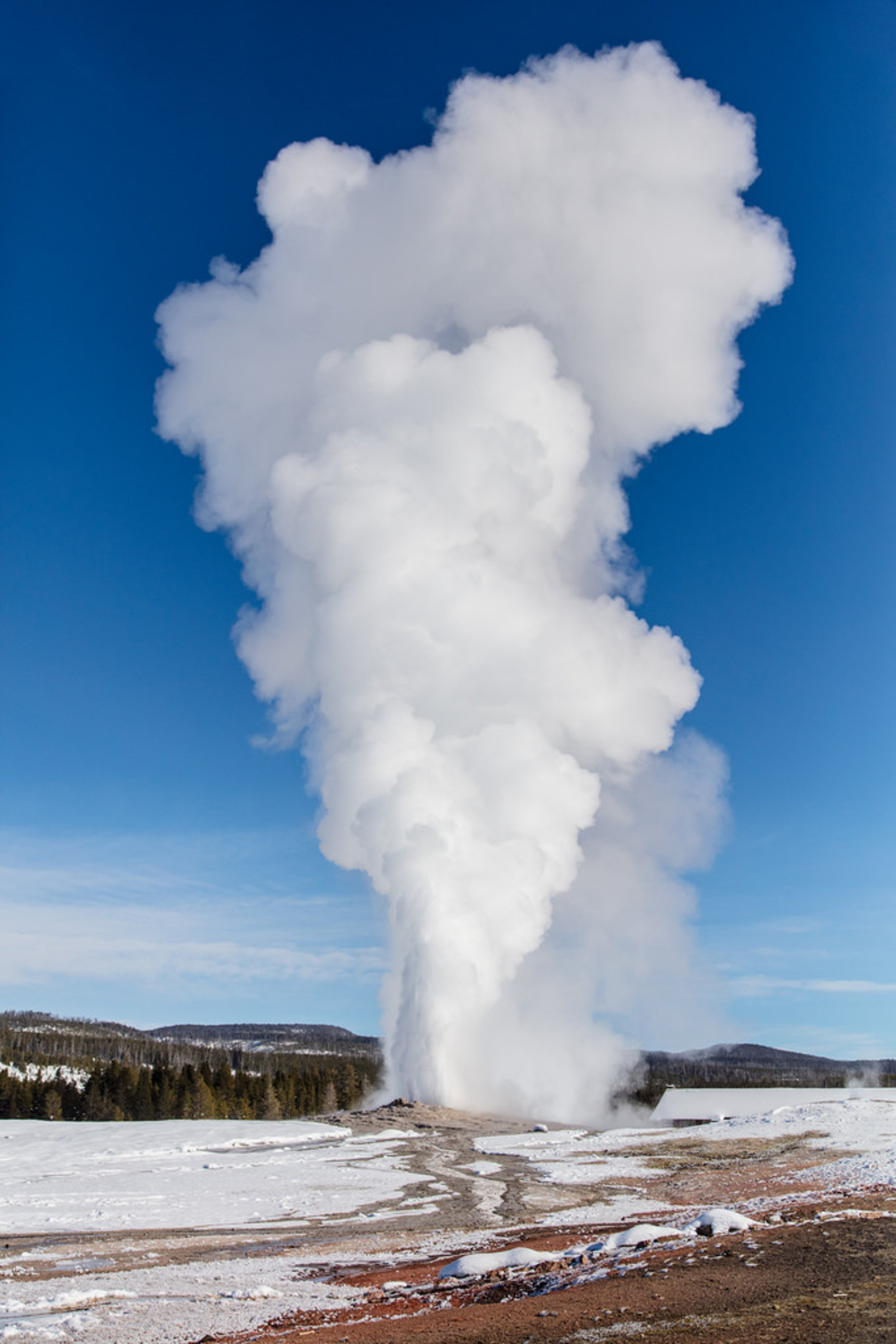 Best time for Old Faithful Geyser in Yellowstone National Park 2020
