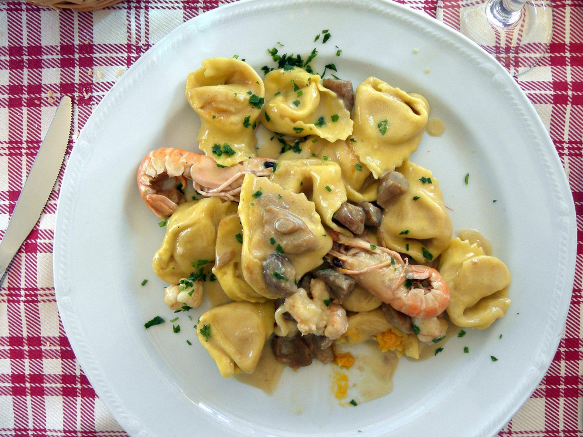 Porcini Season in Florence - Best Season