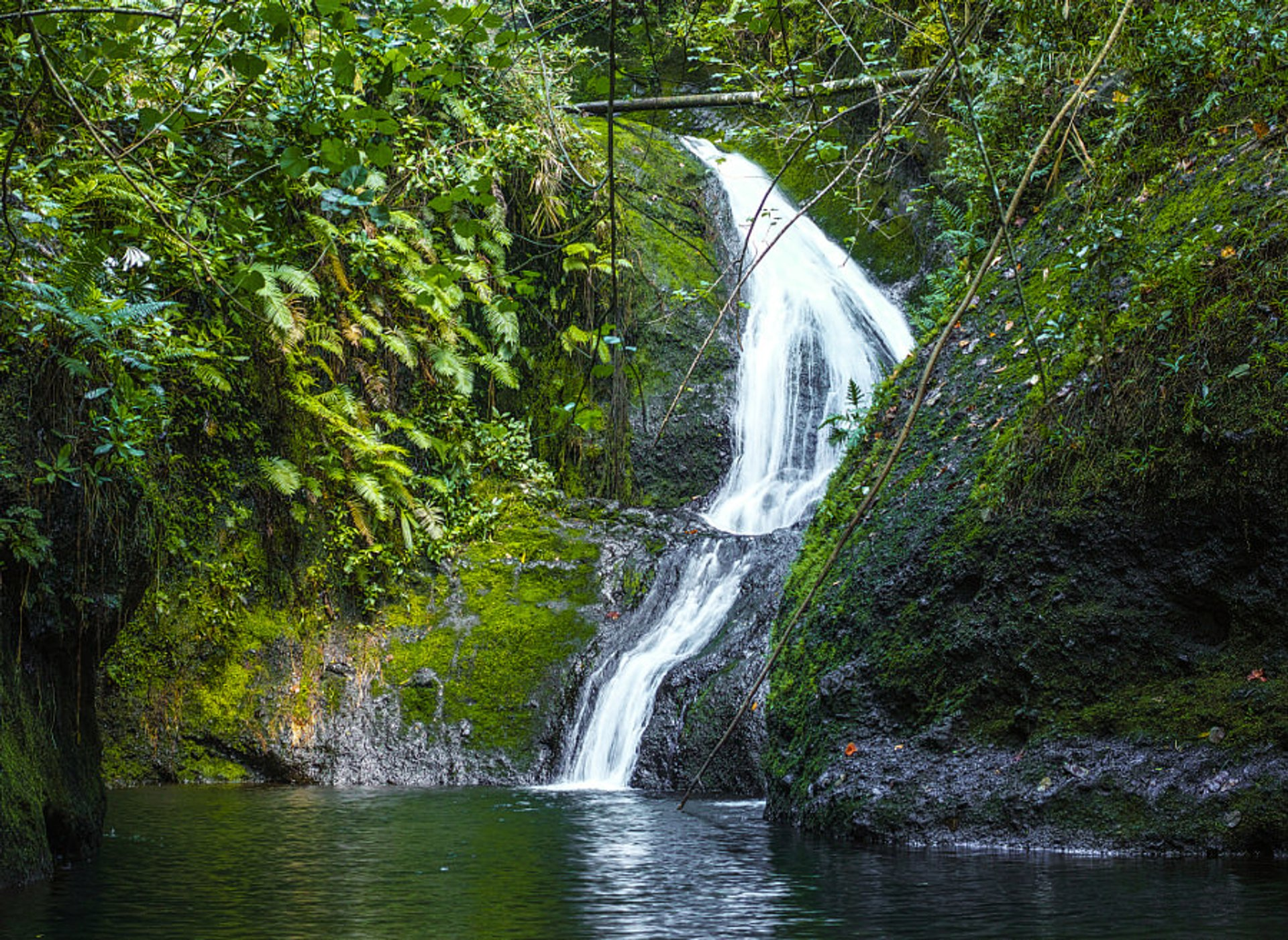 Wigmore's Waterfall (locally known as Papua Waterfall)  2020